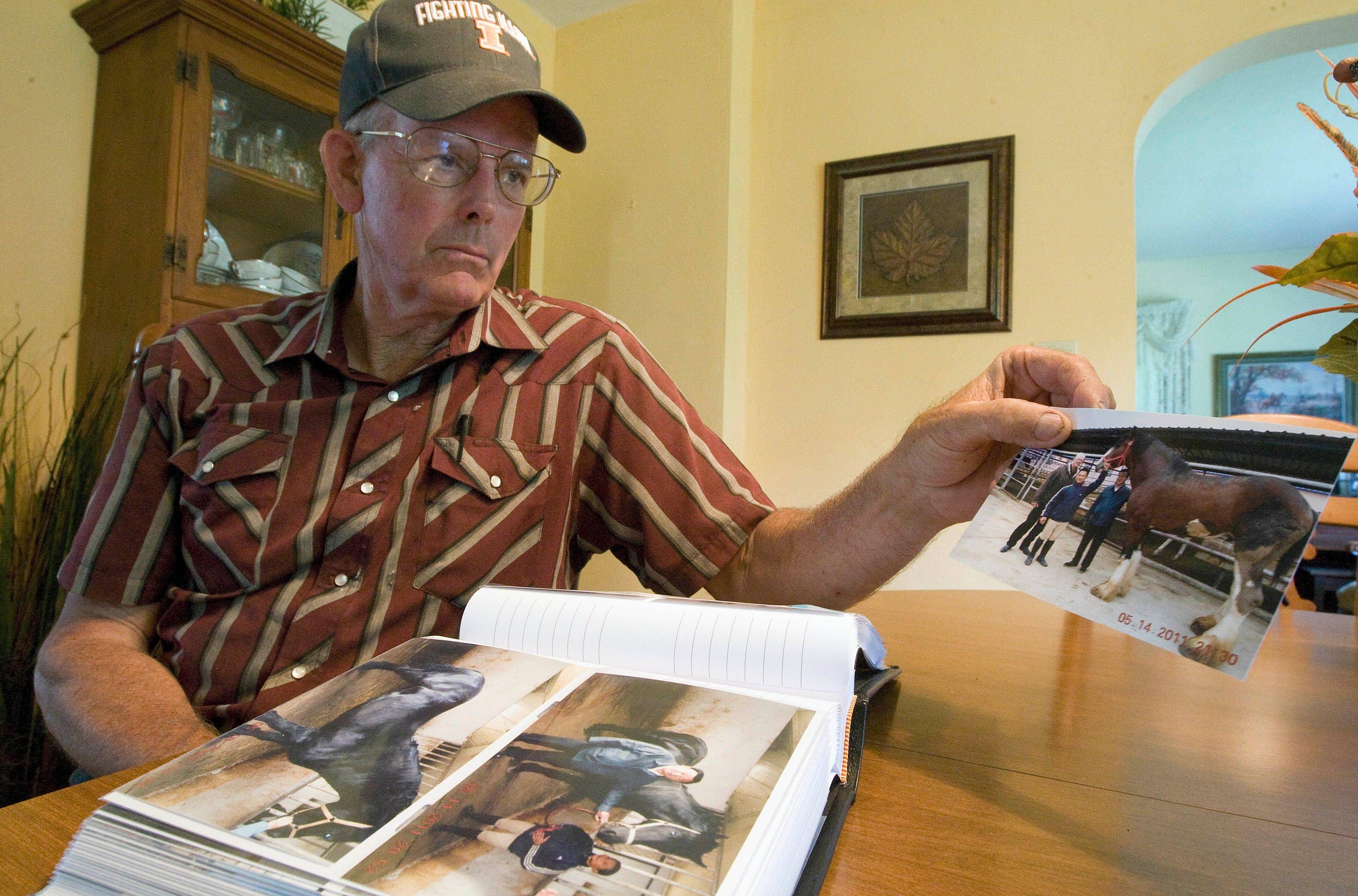 Phil Farrell of rural Lovington, Ill., looks through his pictures from China, where he delivered had several varieties of horses, including Clydesdales, to a Chinese businessman.