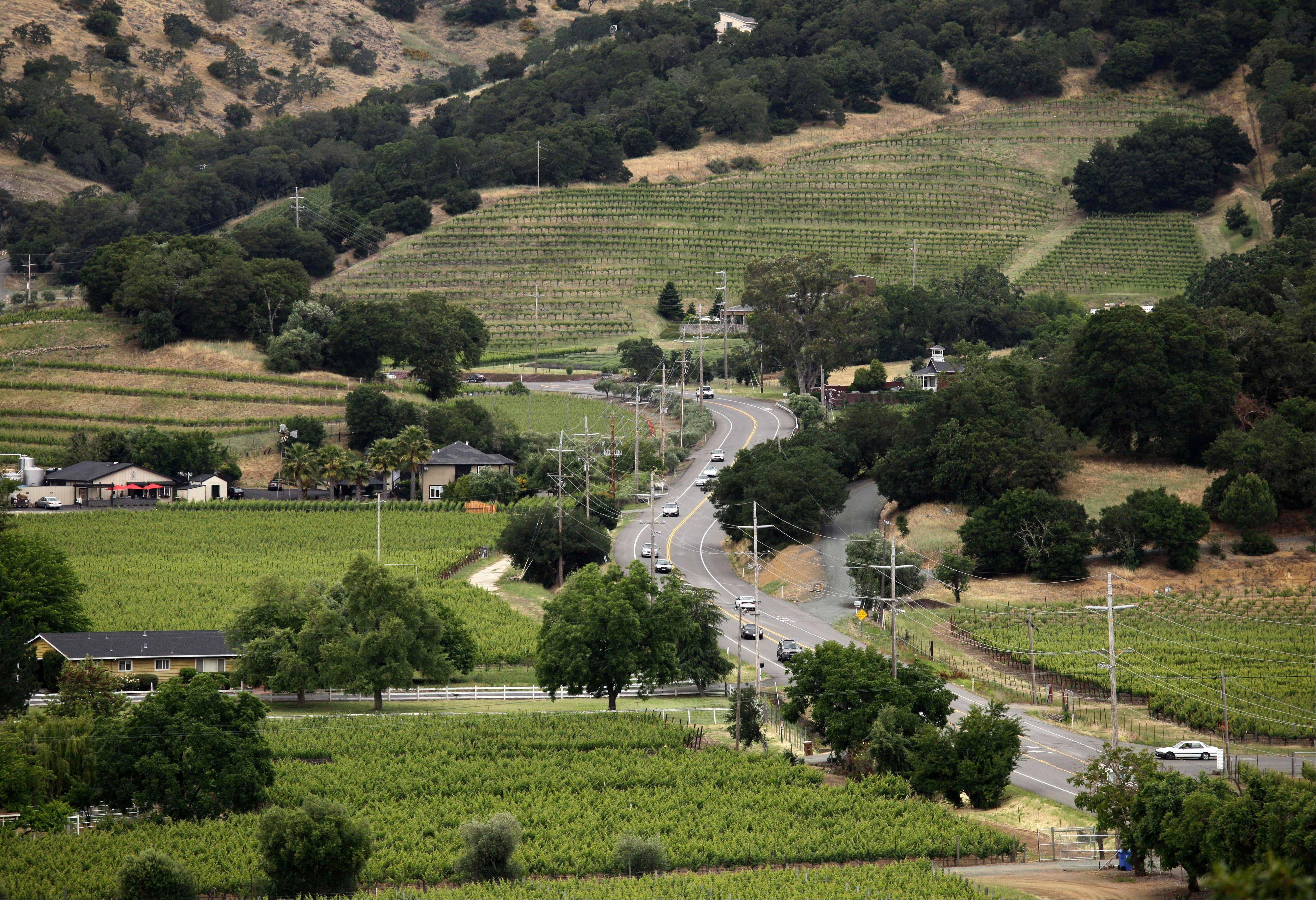 The Silverado Trail winds through the Stags Leap District in this view from Silverado Vineyards in Napa, Calif.