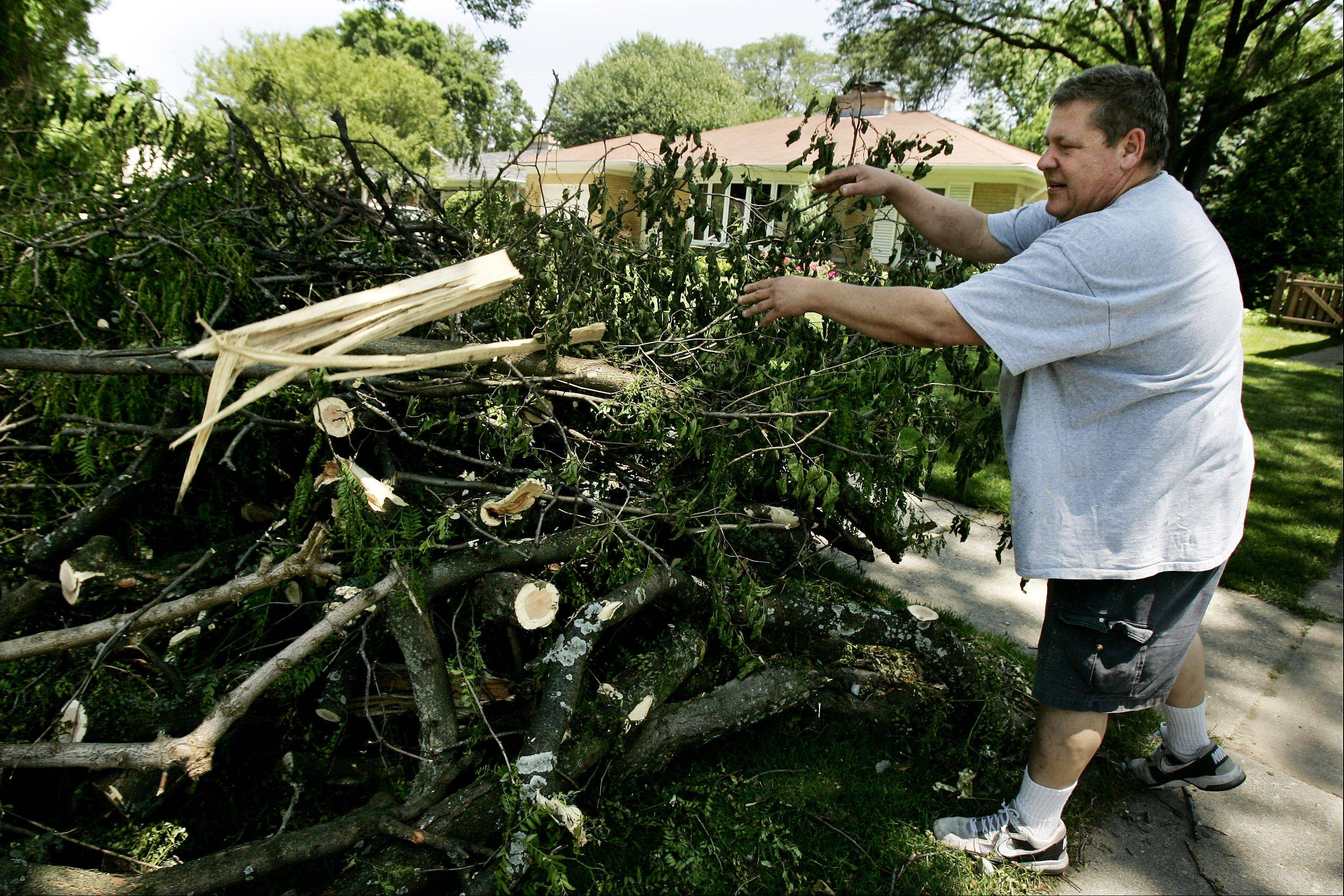 Mark Babicz of the 500 block of See-Gwun Avenue throws another log onto the brush along his street Sunday, as Mount Prospect residents continue to clean up from Tuesday's storm that destroyed a large number of trees in the neighborhood.