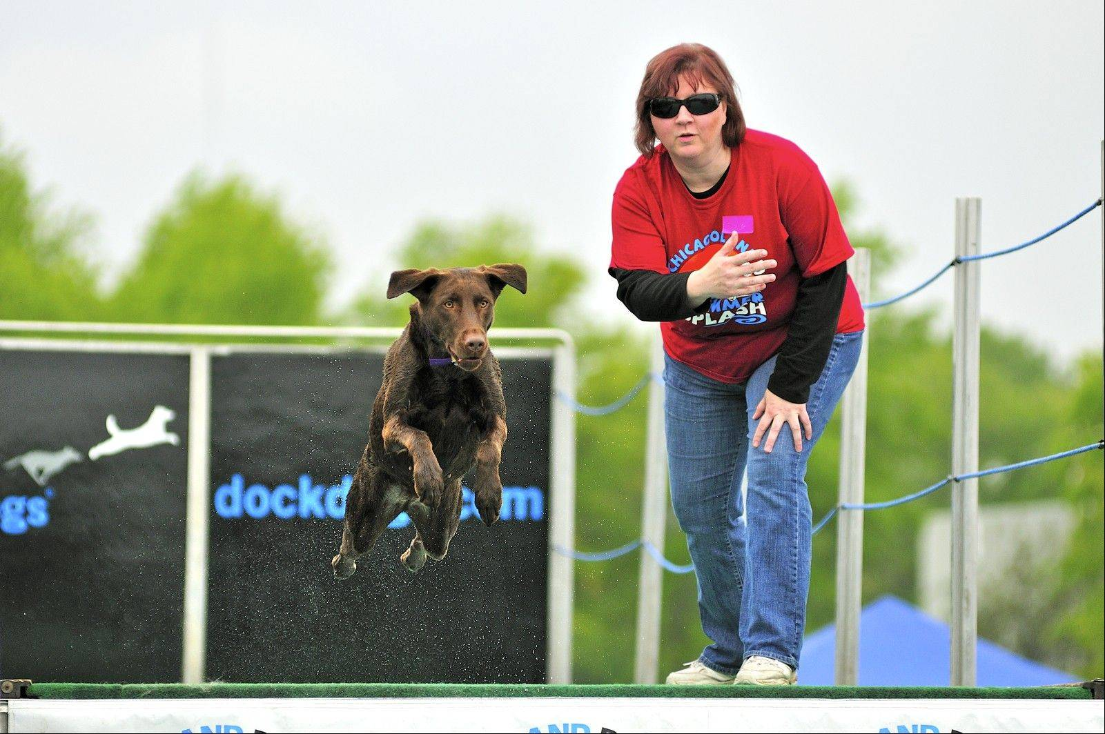 The Dog Days of Summer in downtown Libertyville July 7-10 will feature more than 100 nationally ranked top jumping dogs competing for prizes and rankings, as well as a variety of canine focused competitions, promotions and activities.