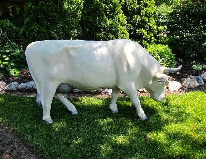 This cow, a wedding gift to Emily and Bruce Duncan of Palatine, is missing.