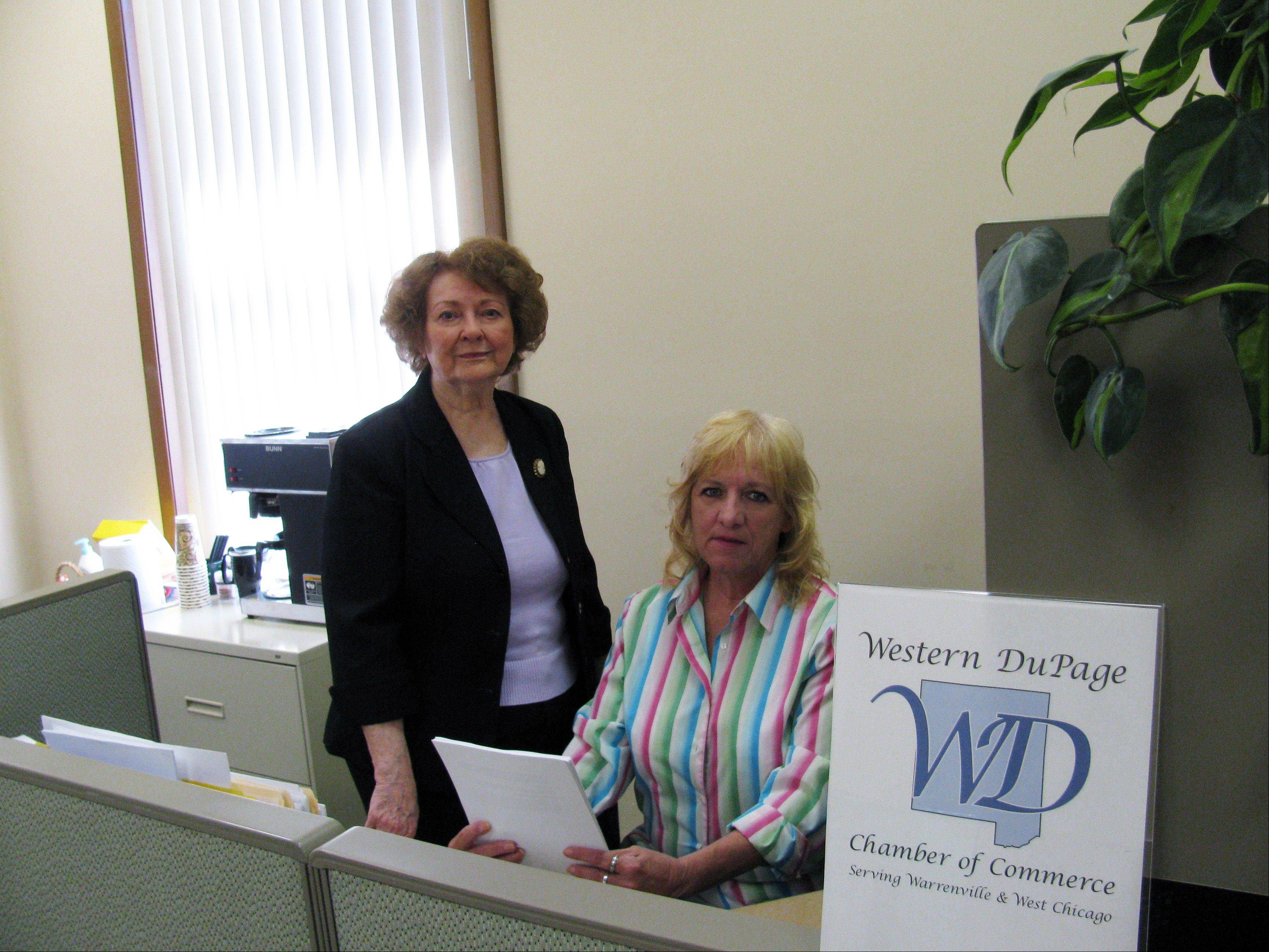 West Chicago-based Training Plus Inc. owners Mary Lou Emami and Lolly Frederick provide skill training and consulting services designed to advance workforce excellence.