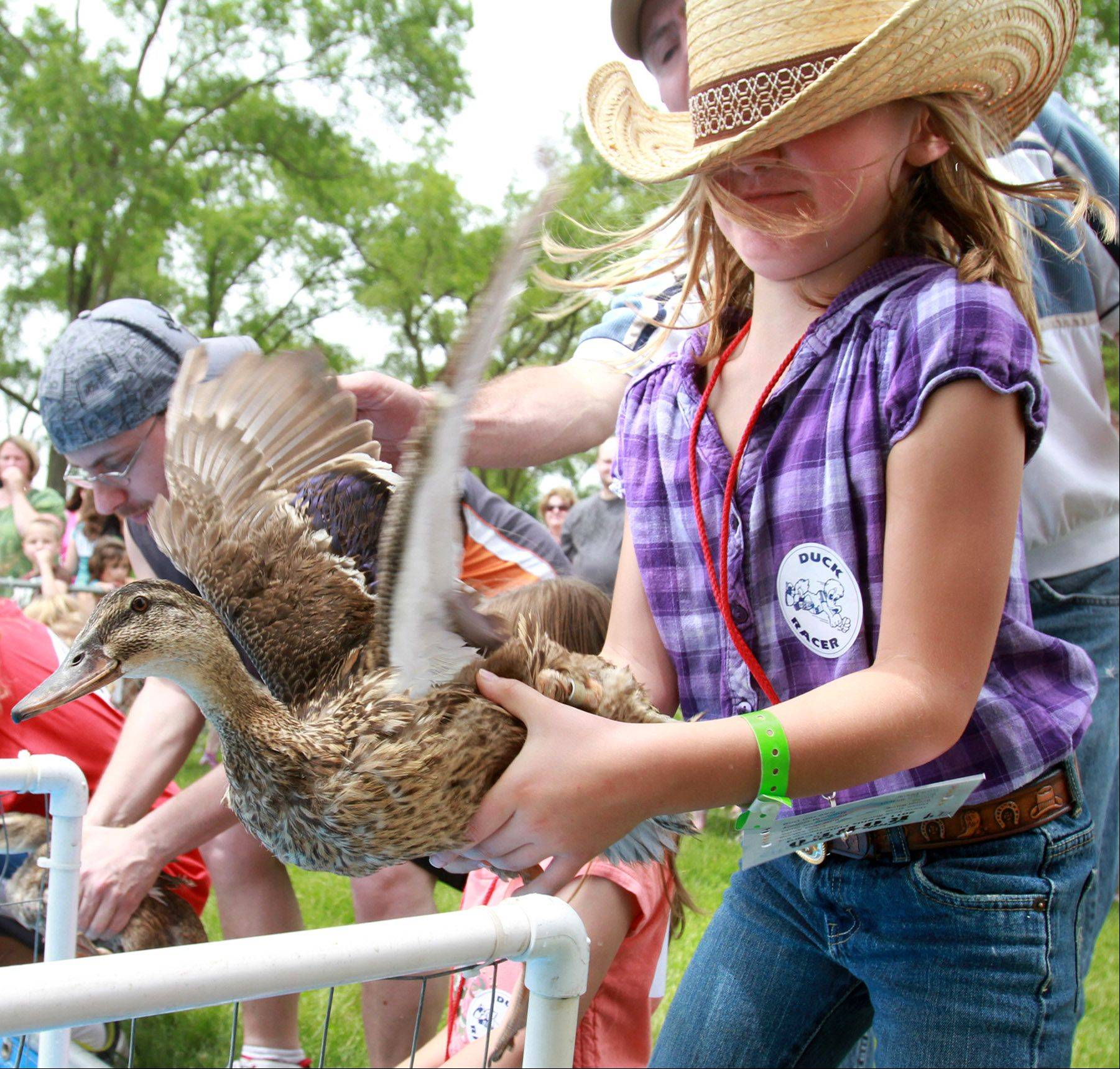 Jocelyn Miller, 8, of Lakewood, has a hard time holding onto her duck, which did break free, at the live duck races at Little Boots Rodeo in Elk Grove Village on Saturday, June 25th.