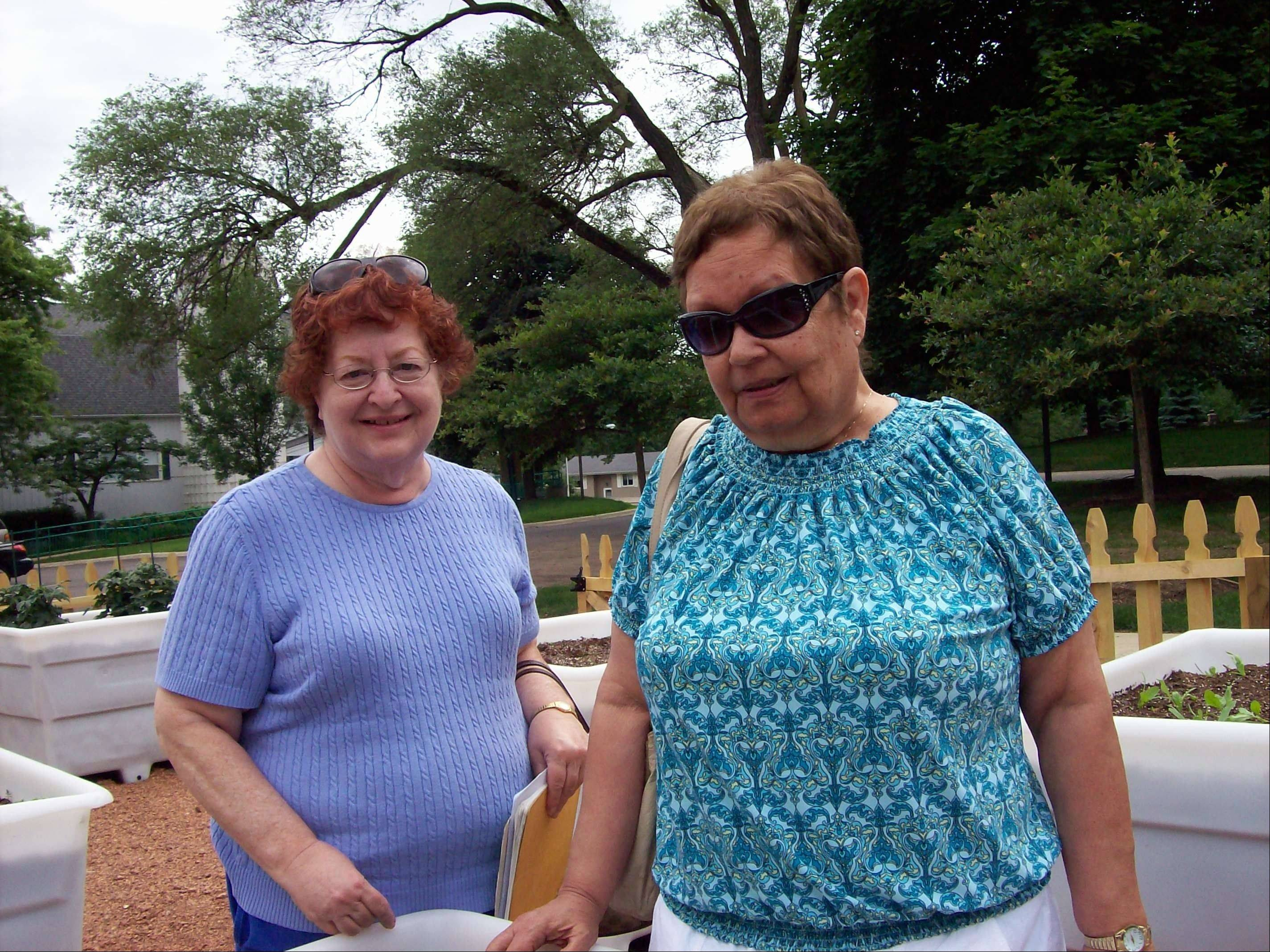 Pictured in the intergenerational produce garden are Bonit Karlin, left, and Esther Alm, both participants of the senior center program at The Barn in Schaumburg.