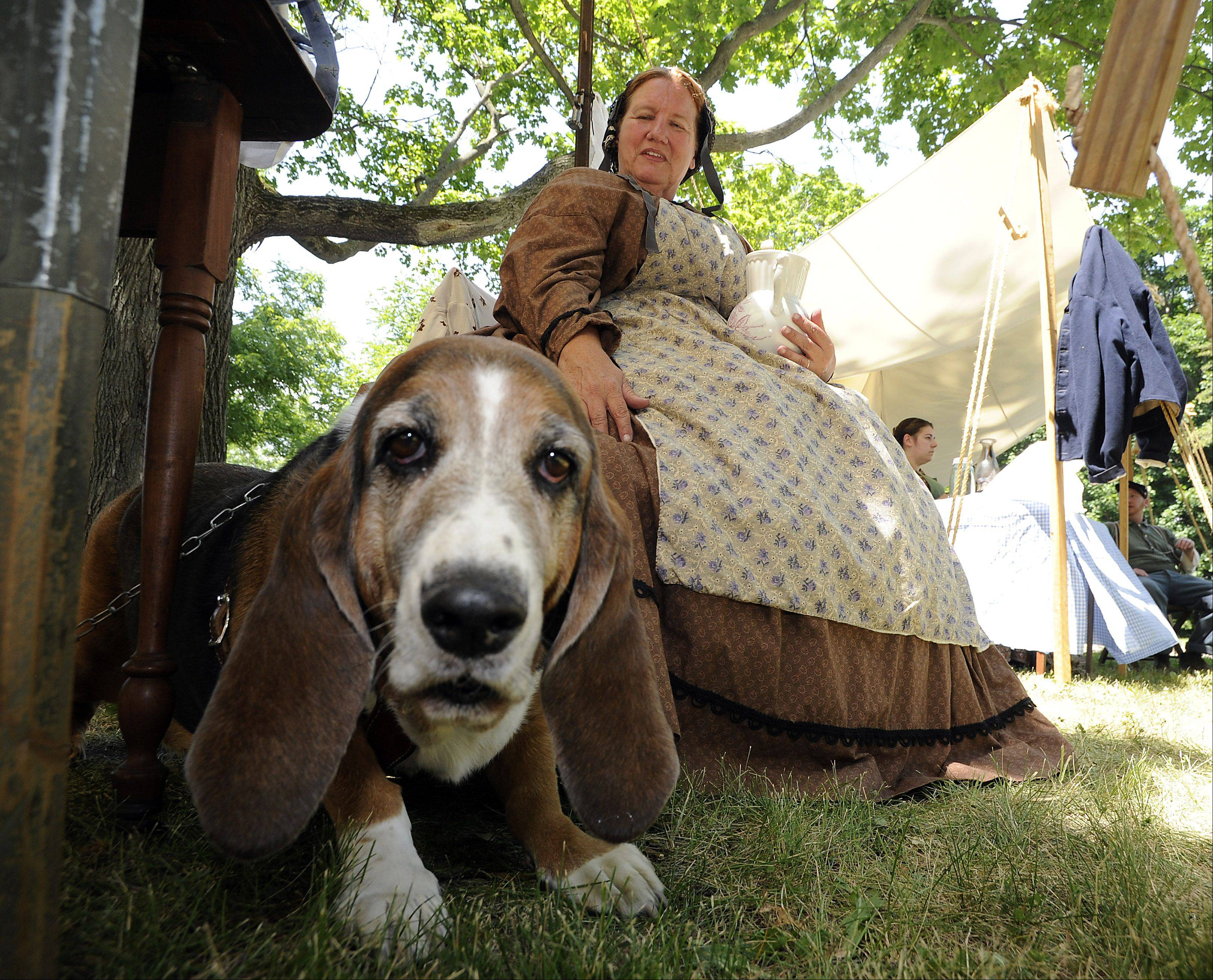 Michelle LaBarre of Manteno and her dog Ulysses S. Grant watch over the events of the day at the 20th annual Civil War days at the Lake County Forest Preserve on Saturday.