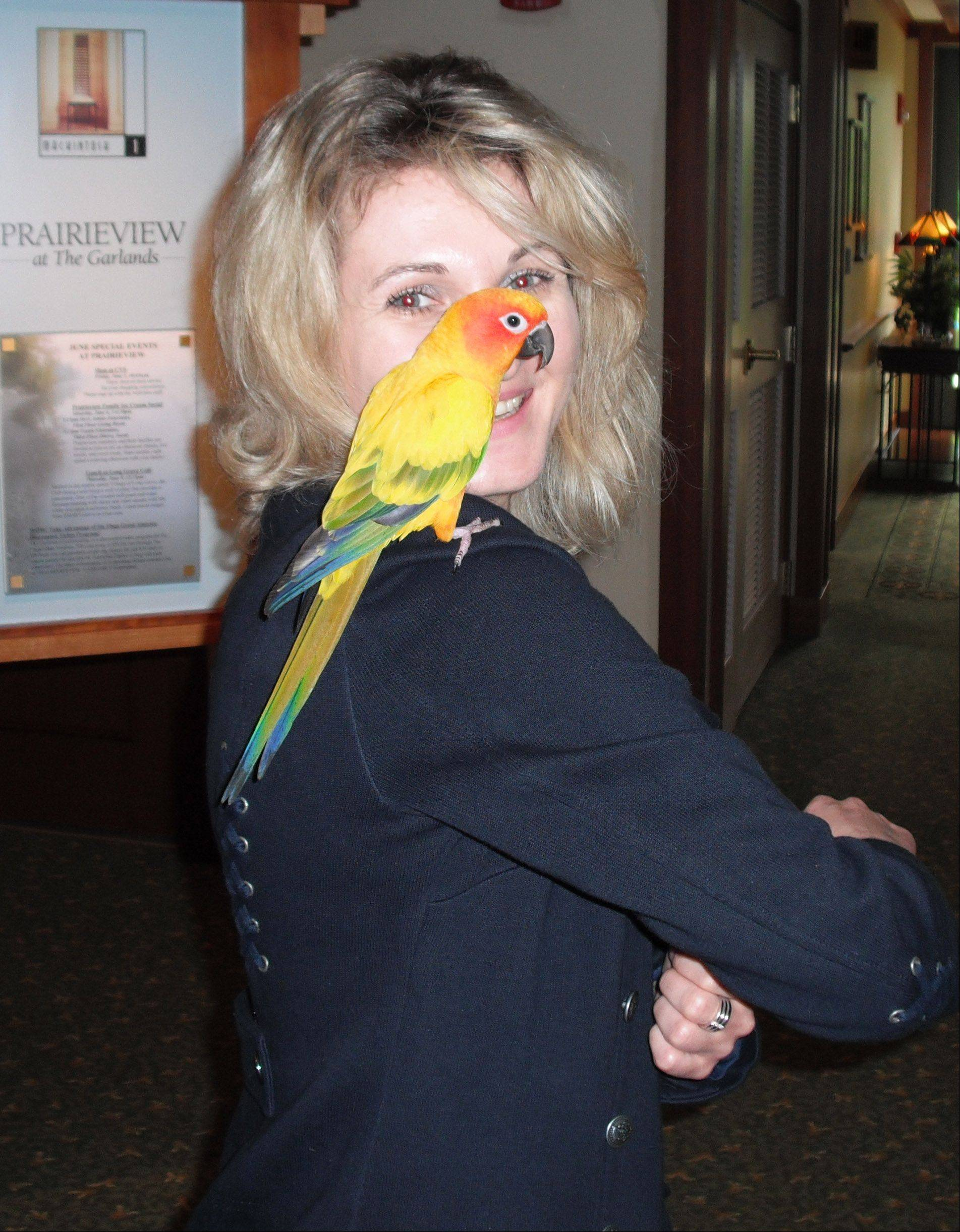 Kasha the parrot was happily reunited with his owner, thanks to the caring members and staff of Prairieview at The Garlands.