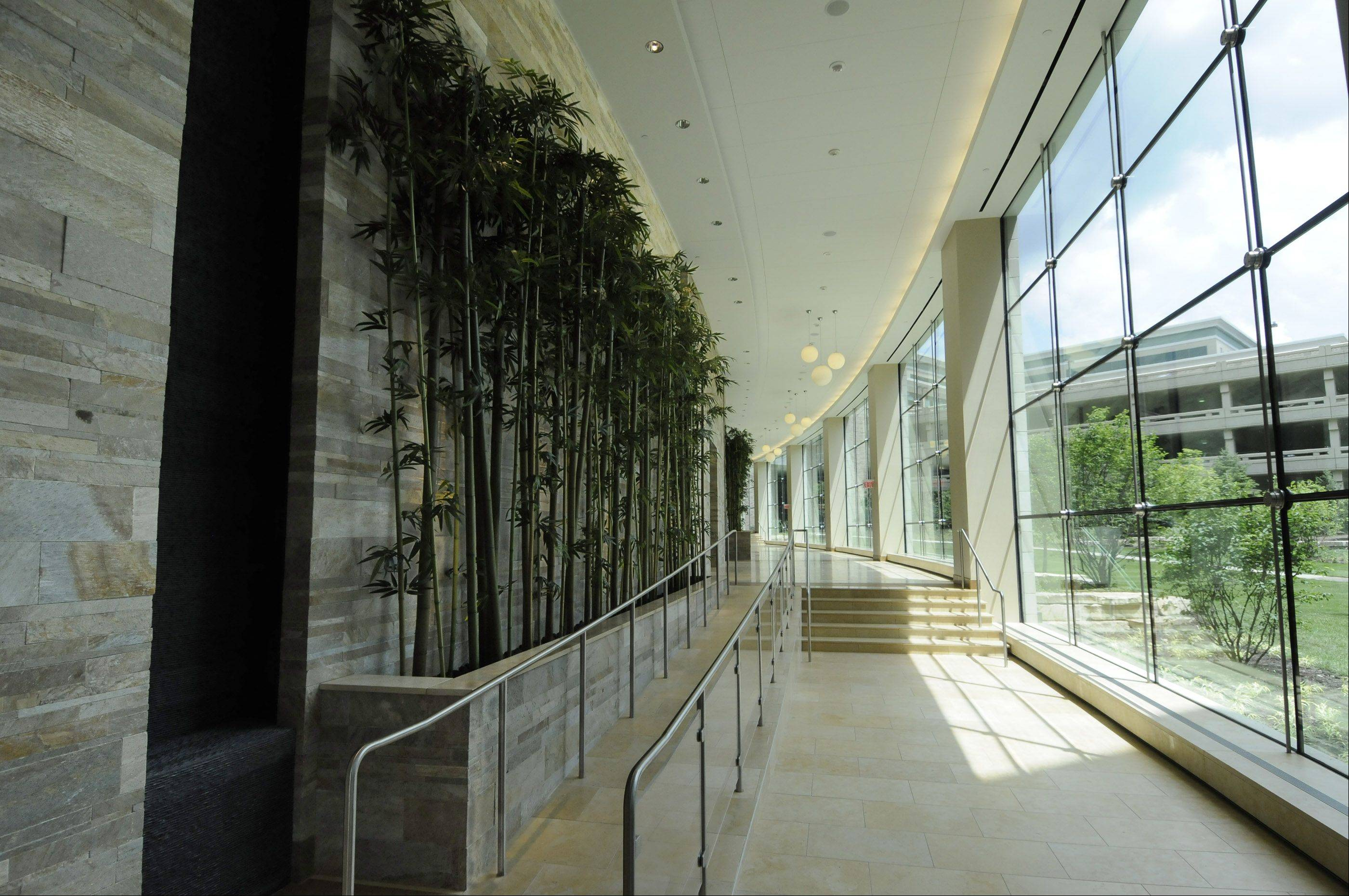 Artificial bamboo shoots are on display in the new wing at Central DuPage Hospital in Winfield.