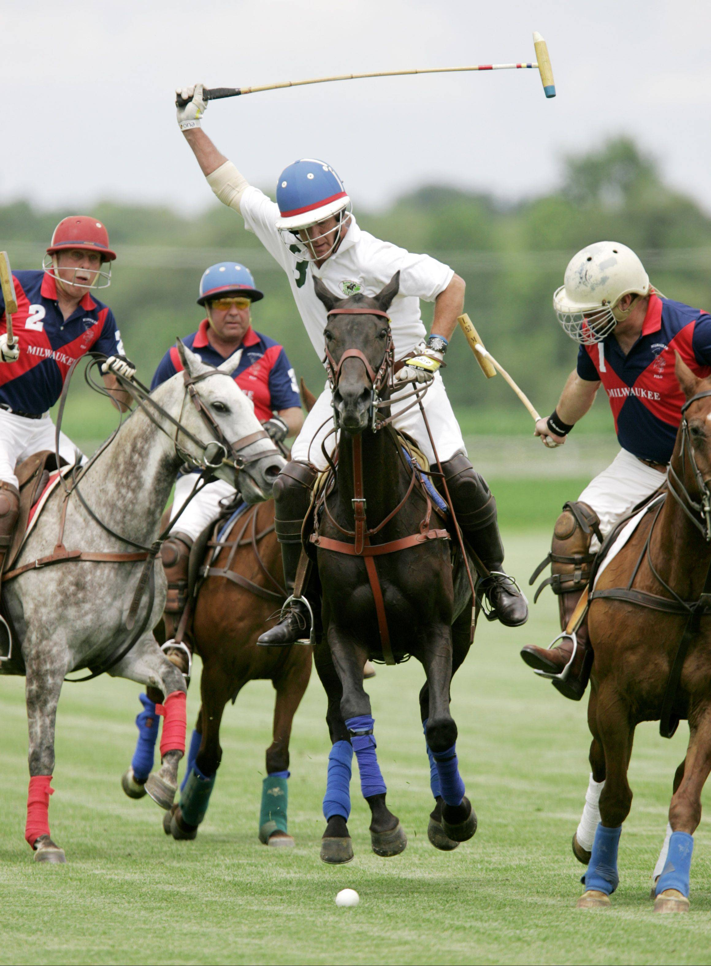 This year's polo tournament at Blackberry Polo Field Sunday, July 17, will feature teams from around the county.