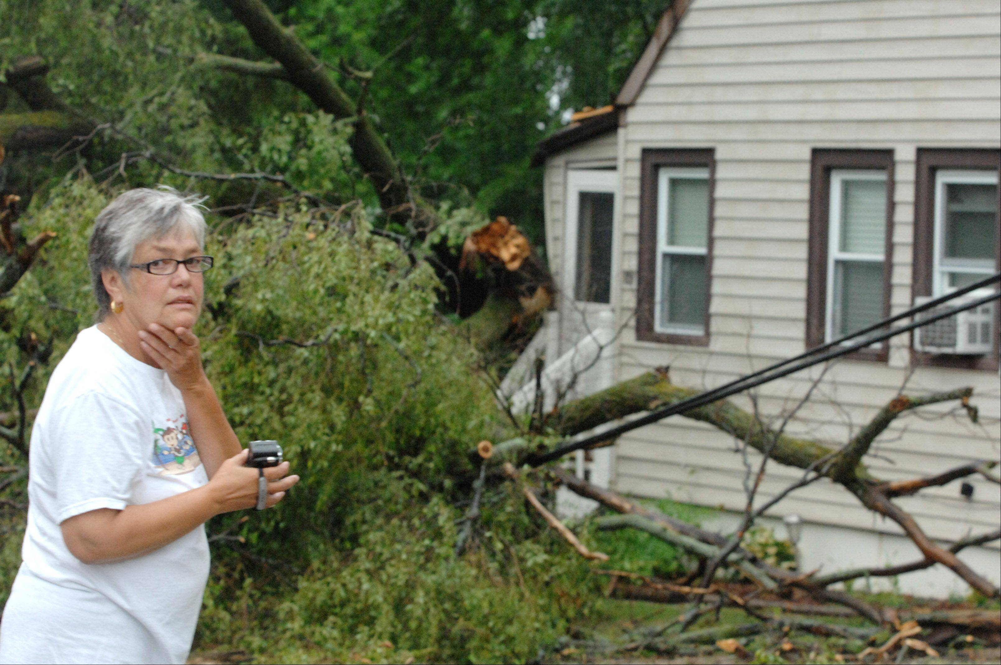 Round Lake Park resident Linda Whitmore surveys the damage after a tree hit her Clifton Road home Monday morning following the severe storm that blew through Lake County.