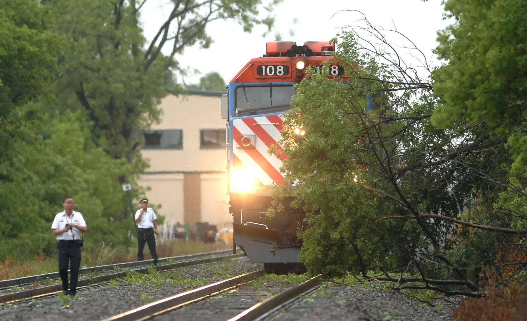 A Metra train is stopped in its tracks near Lake Street in Grayslake as a fallen tree blocks its path following Monday morning's storm.