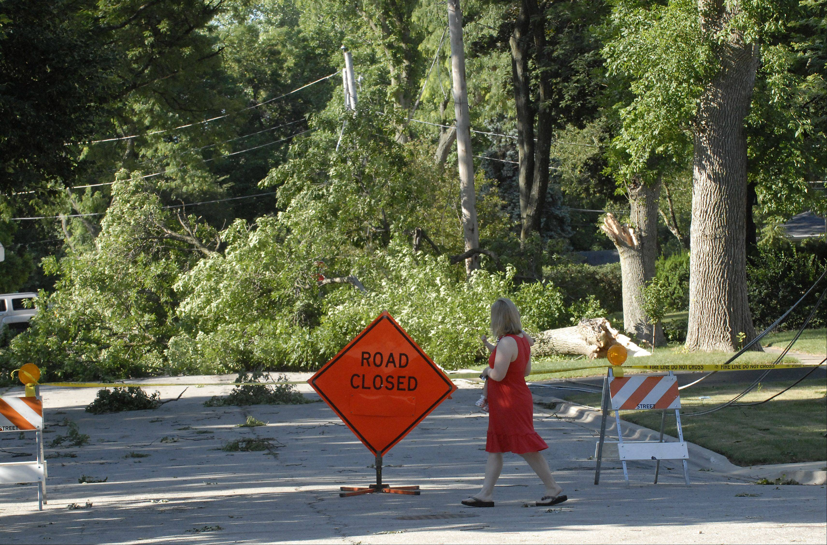 Kennicott Avenue between Wing and Campbell Streets remains closed with large tree limbs across the street and power lines down Tuesday in Arlington Heights. The damage was caused by a thunderstorm with strong winds that tore through the area Monday morning.