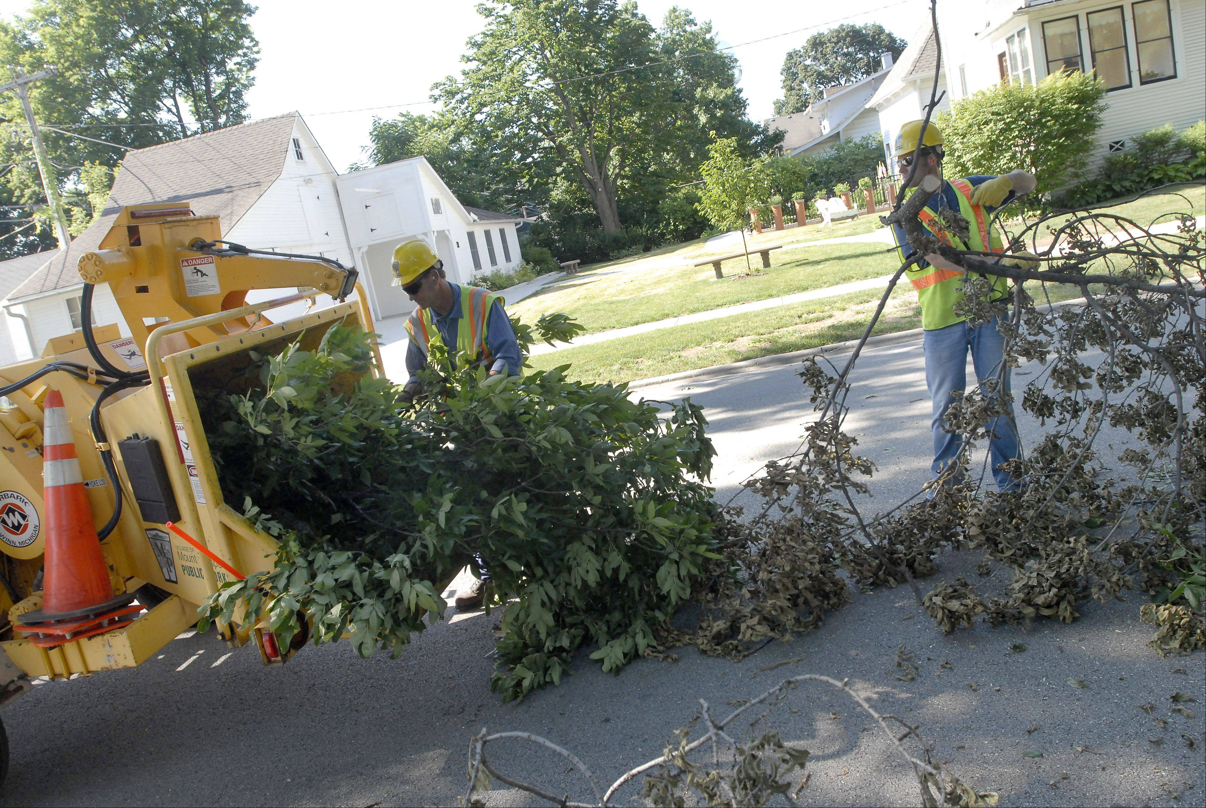Arborist Andy Byers, left, and Doug Petro, with the Mount Prospect Forestry Division clean up debris Tuesday morning following yesterday's storm that left over 800,000 Com Ed customers without power.