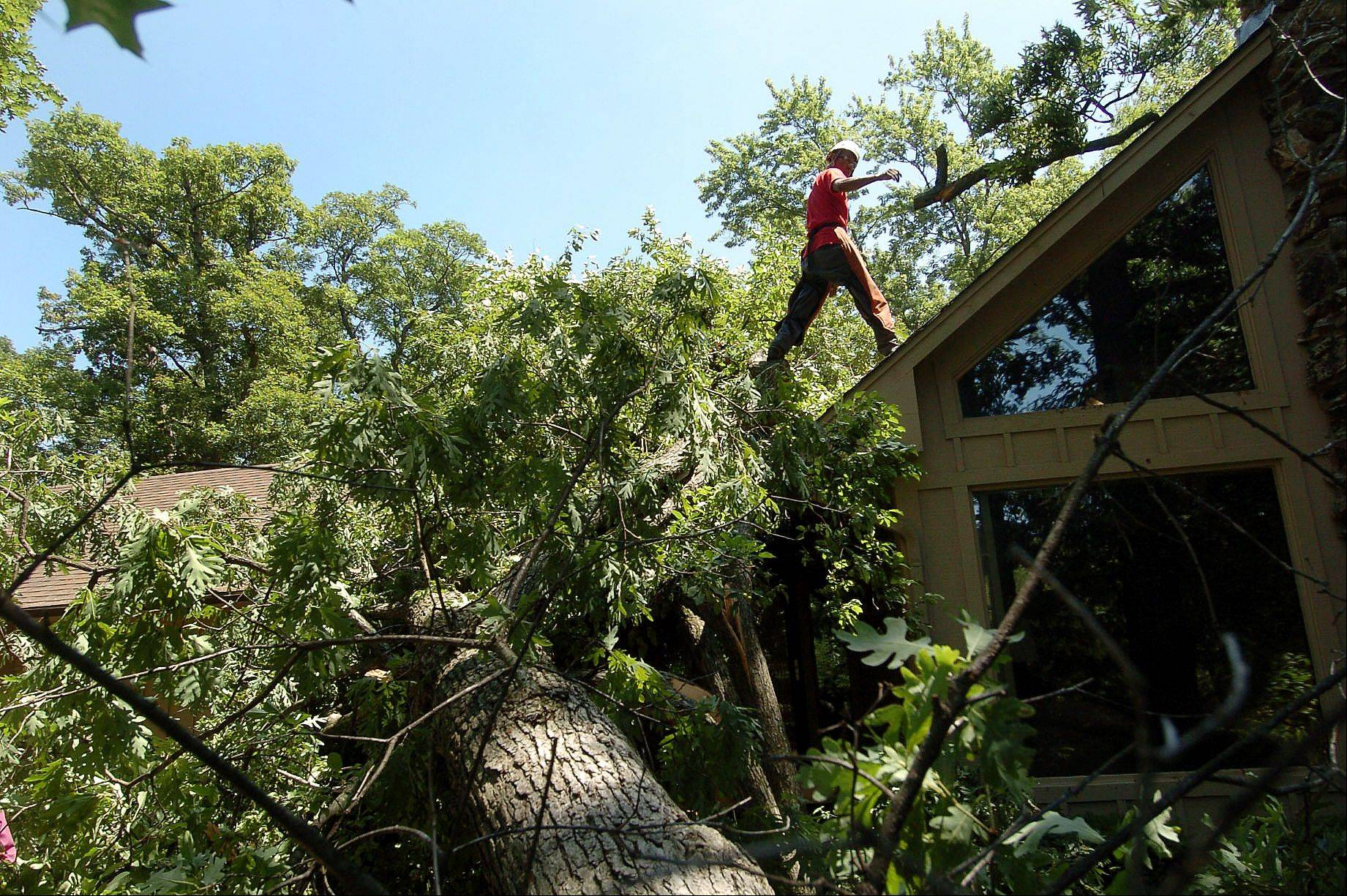 Luis Garcia and his crew from McGinty Bros., Inc. remove a fallen tree from the roof of a residence on Brierwoods Lane in Hawthorn Woods.