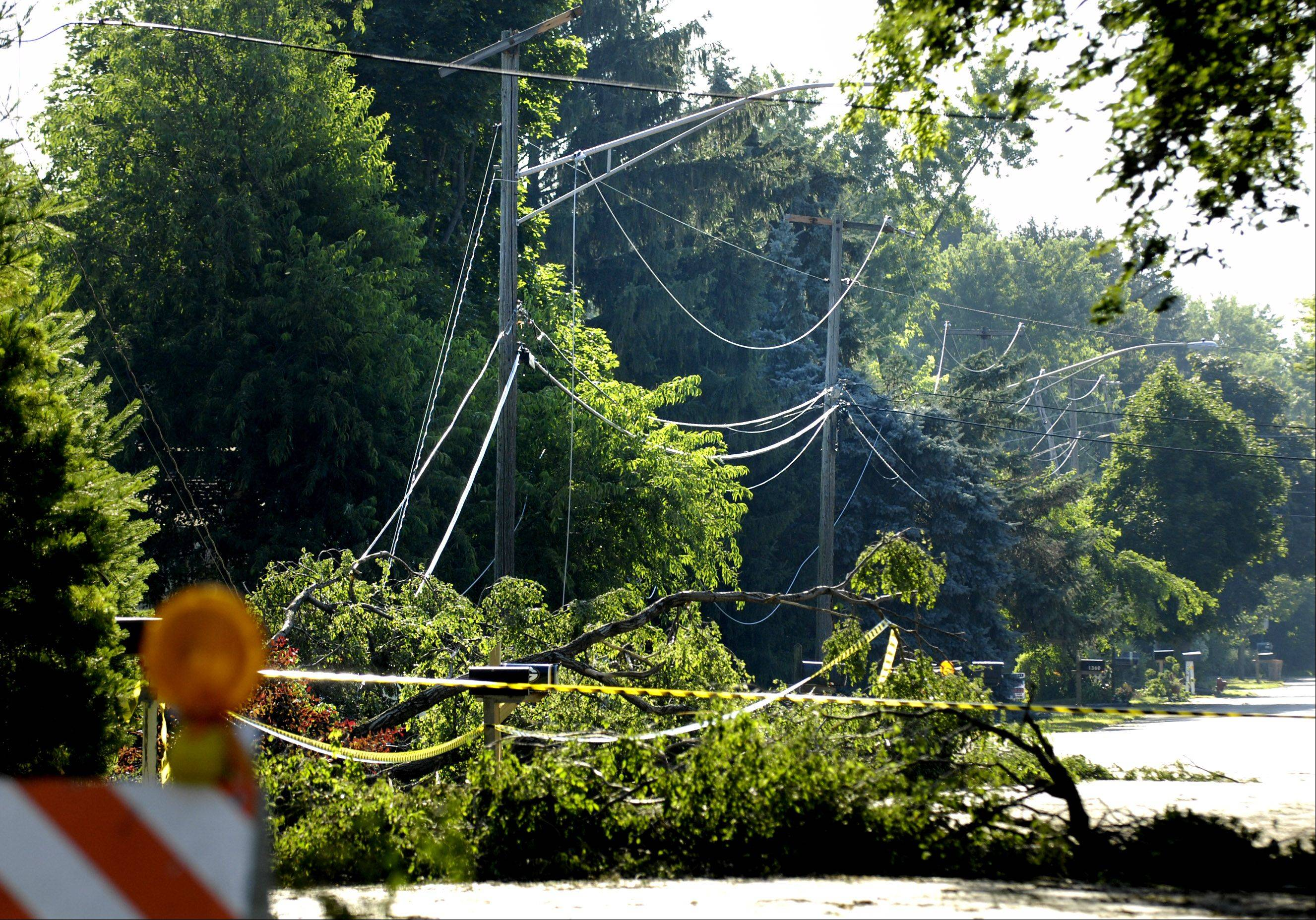 Wires under downed trees block Thornwood Lane on the west side of Crystal Lake Monday morning.