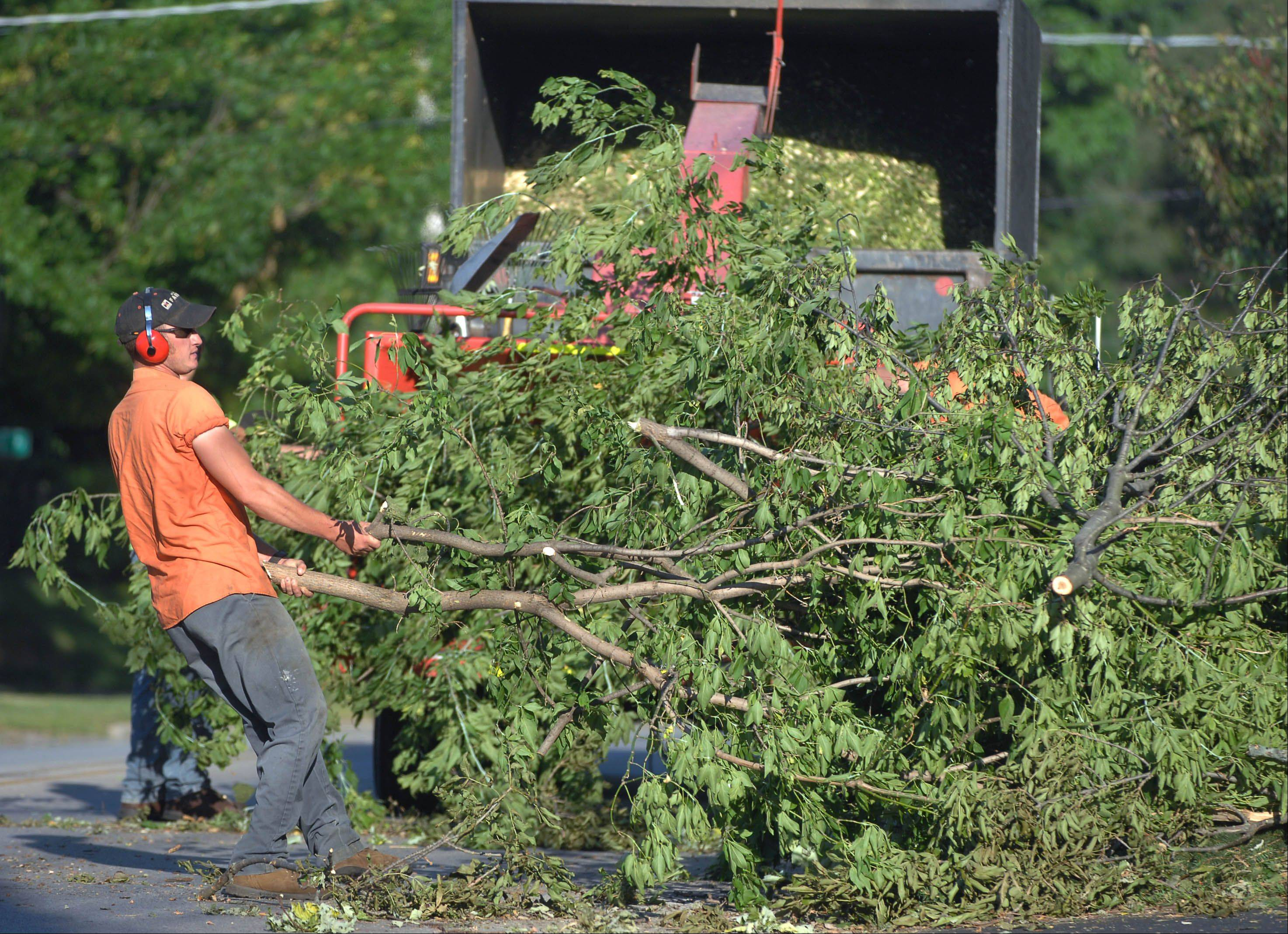 Fox Lake Public Works crews clean up trees along Grand Avenue Tuesday morning following Monday's storm.