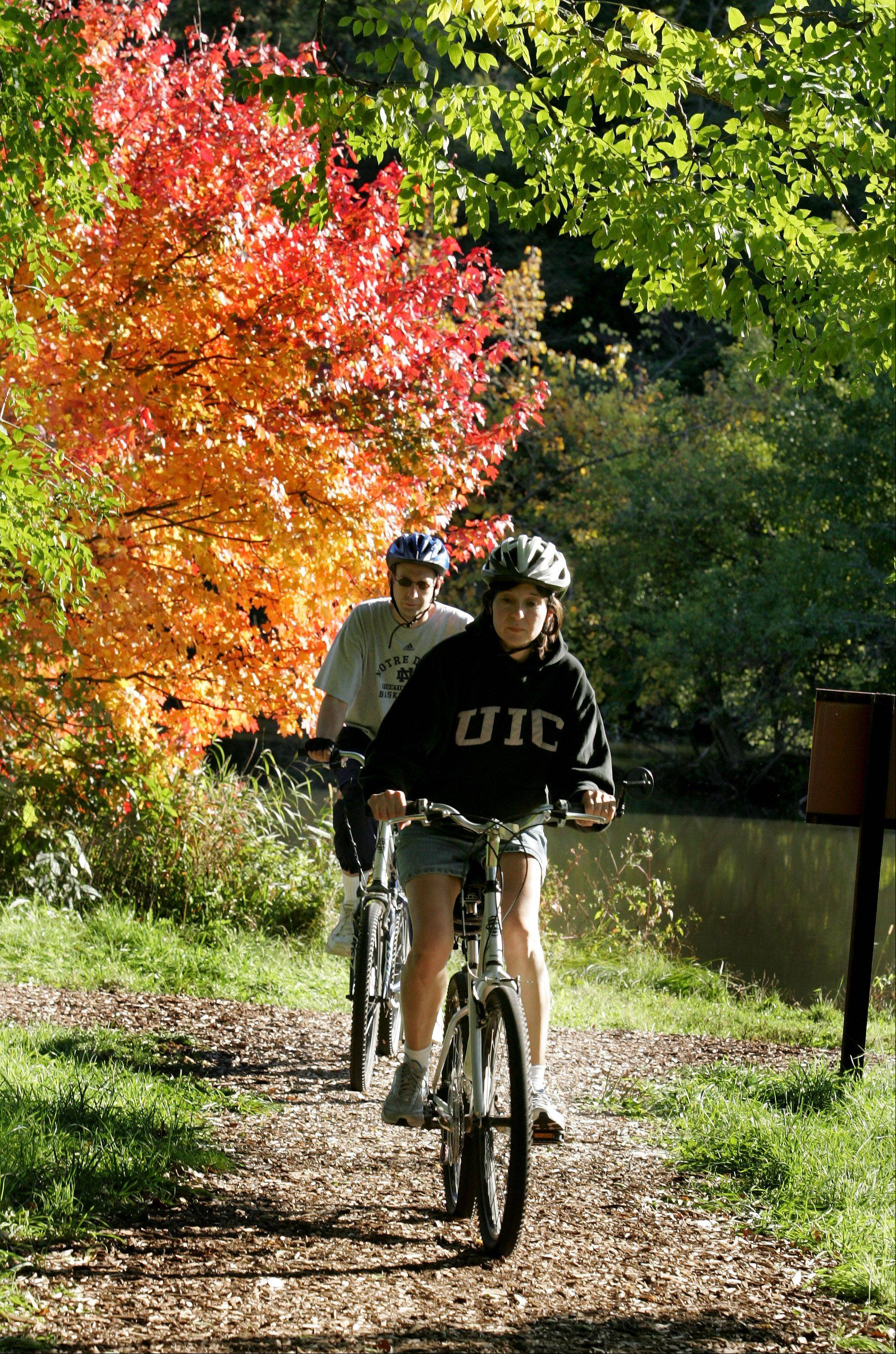 Biking at the Arboretum has gotten easier since official there decided to open up the 14 miles of trails to just bicyclists and pedestrians on Friday evenings and Saturday and Sunday mornings.