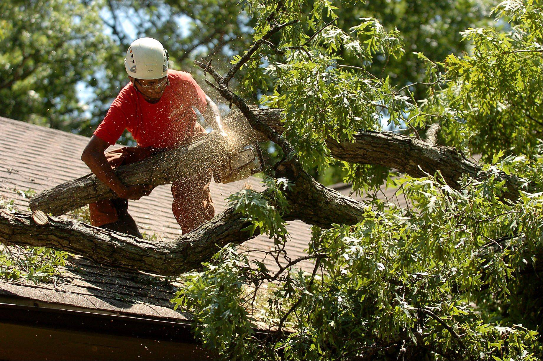 Luis Garcia from McGinty Bros. Inc. uses a chain saw Tuesday to remove a fallen tree from the roof of a residence on Brierwoods Lane in Hawthorn Woods.
