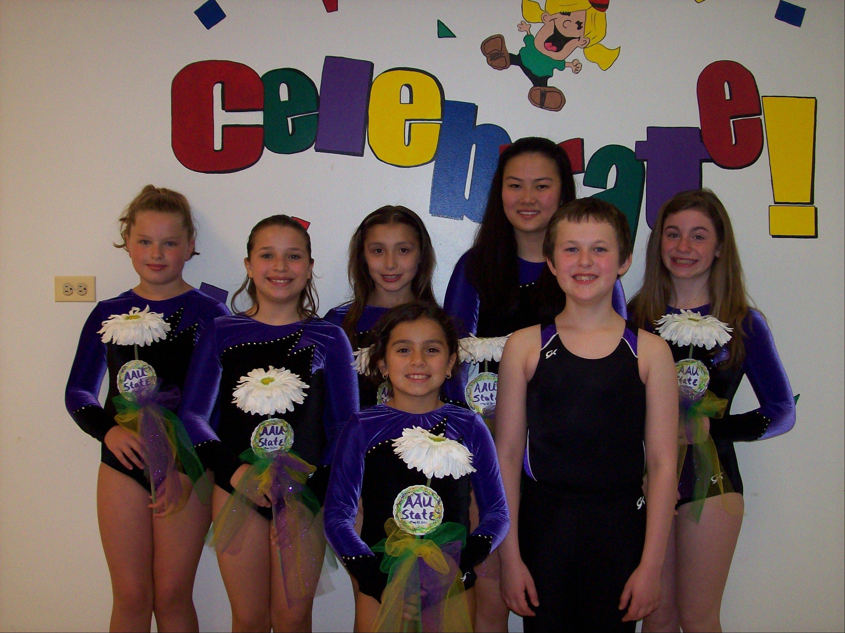 Members of the Trampoline and Tumbling team from Ultimate Gymnastics of Gurnee are celebrating success after the recent AAU State meet, held in Chatham. Back row, from left: Holly Merlock, Amanda Stautz, Lucy Tarcha, Karis Kovacs and Gina Bernardini; front row: Shannon McDermott and Paul Coleman. All will be traveling to New Orleans to compete in the Junior Olympics at the end of July.