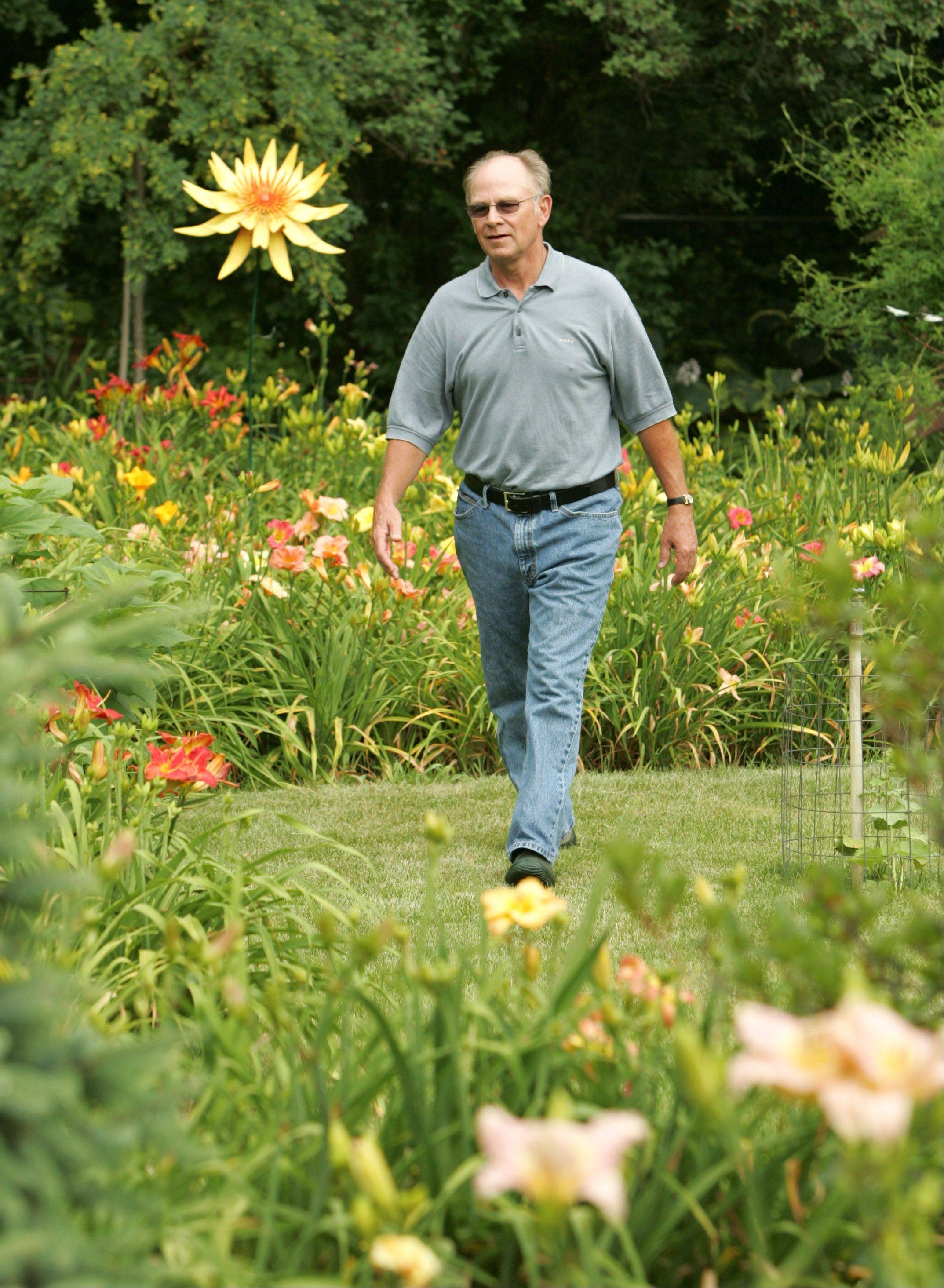 If it�s color you�re looking for, Richter�s day lilies are your plants, and July is the time.
