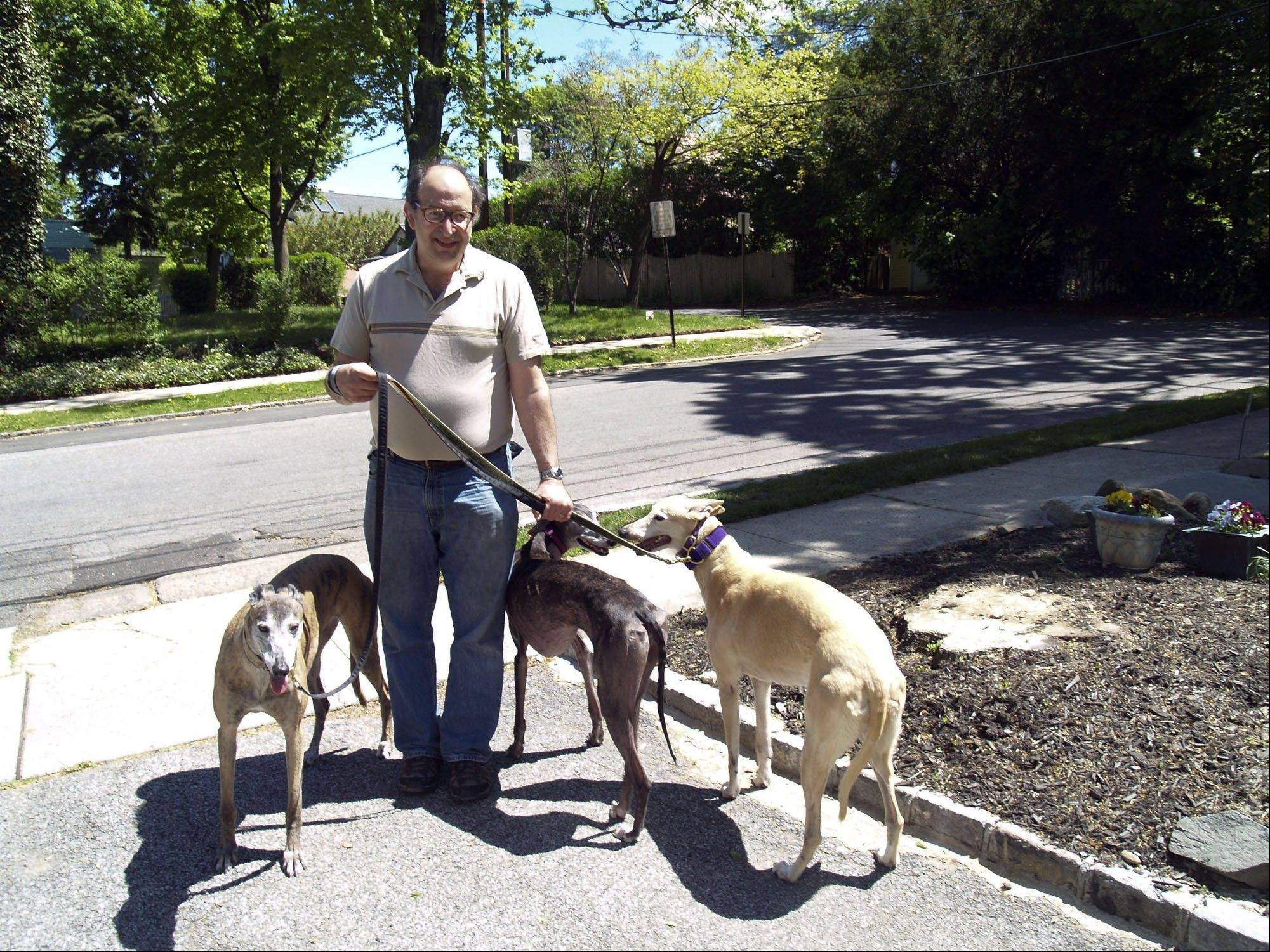 Multiple-greyhound owner and foster home host Peter Romeo takes a stroll with Belle, Carrie and Cleo in Port Washington, N.Y. Romeo and his wife have turned their home into a modest shelter for greyhounds.
