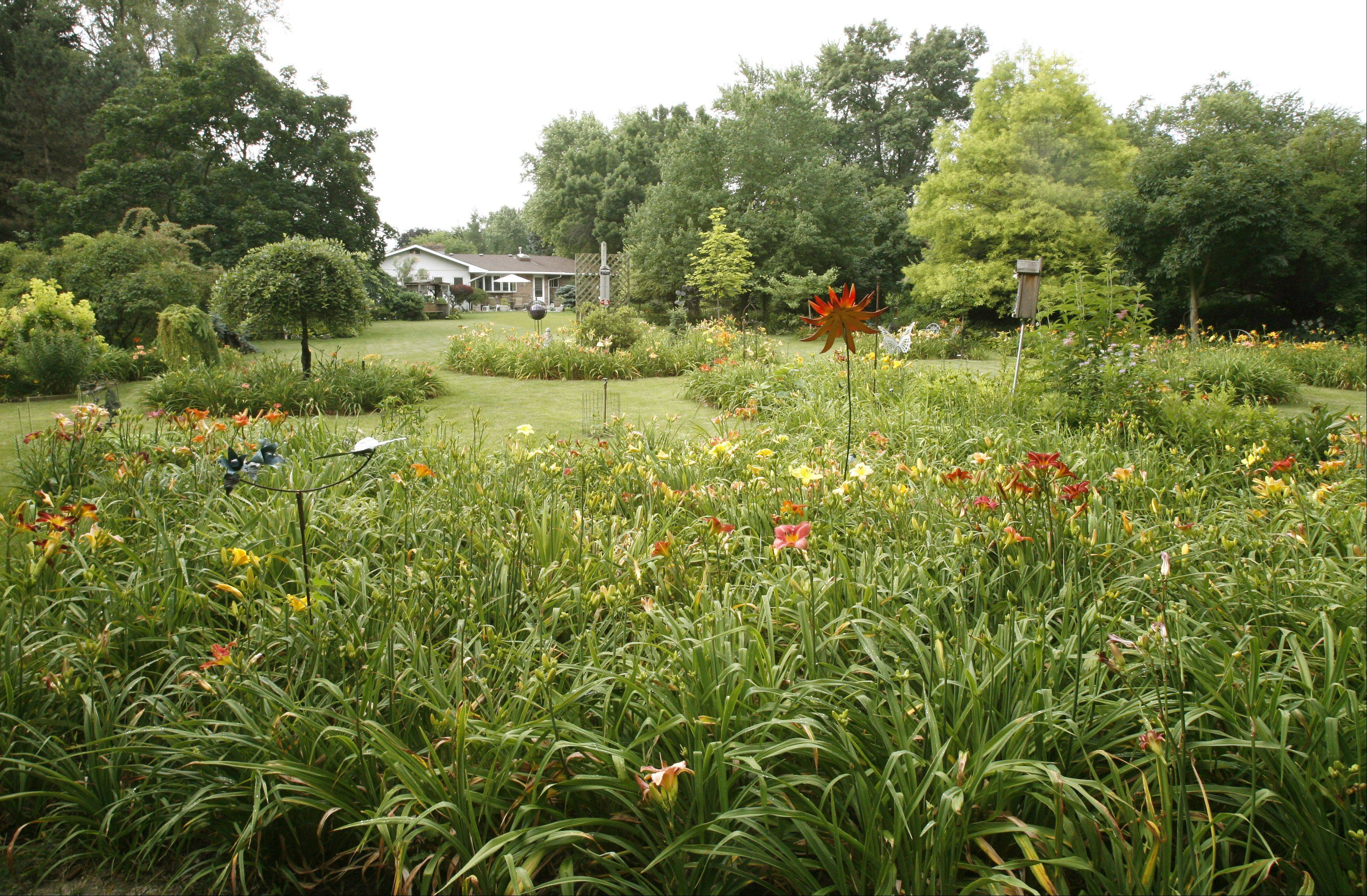 John Richter invites people to visit his acre in Warrenville, which features day lilies, hostas and grafted trees.