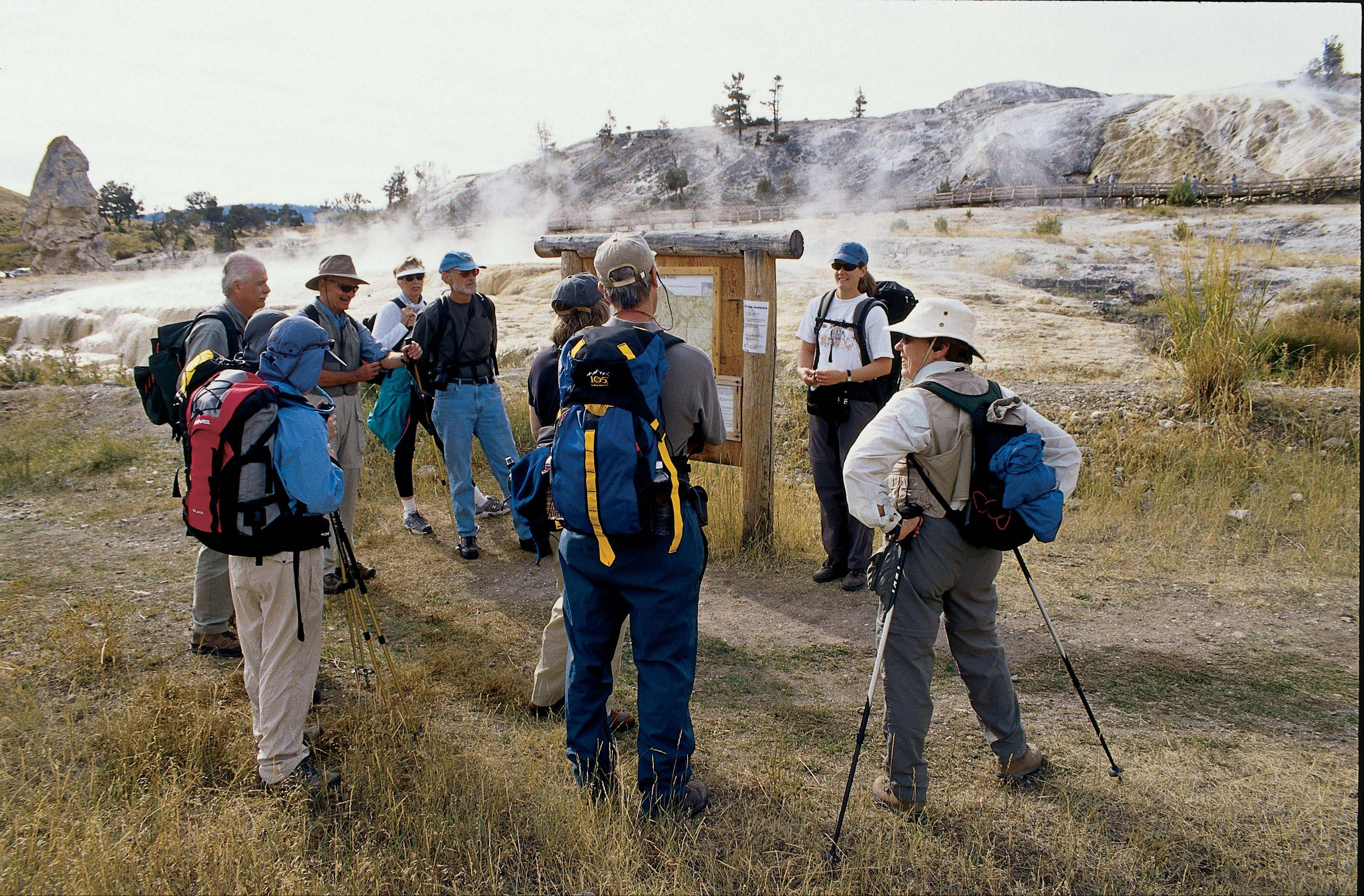 Roosevelt Rendezvous offers daytime field excursions followed by comfortable lodging in the historic Roosevelt Lodge in Yellowstone Park.