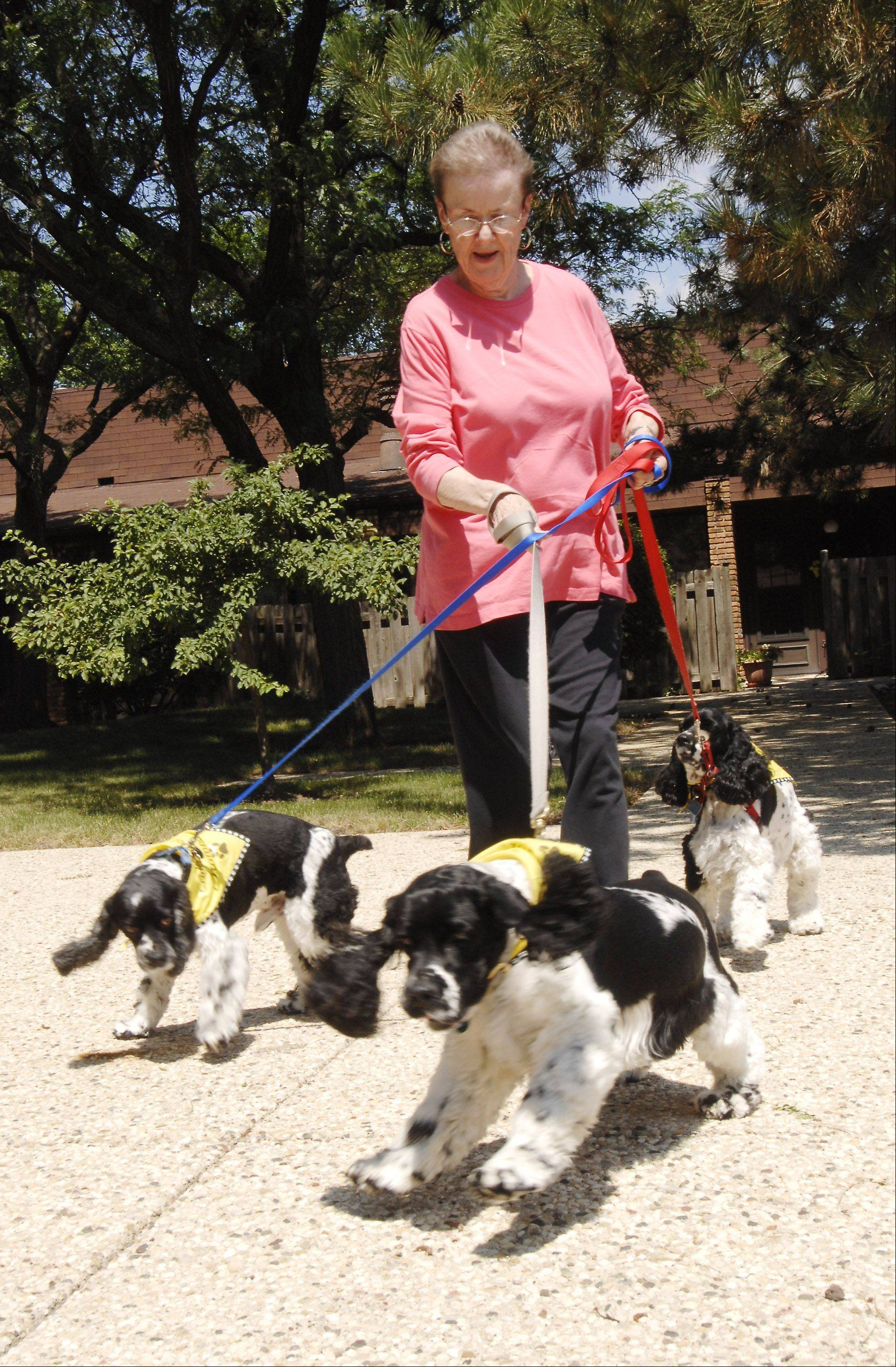 Karen Schlabach of Glen Ellyn is an avid user of DoggySpace, a social media site for dogs to express themselves on the Internet. She is the secretary for her three cocker spaniels and says she writes down what they dictate for the website.