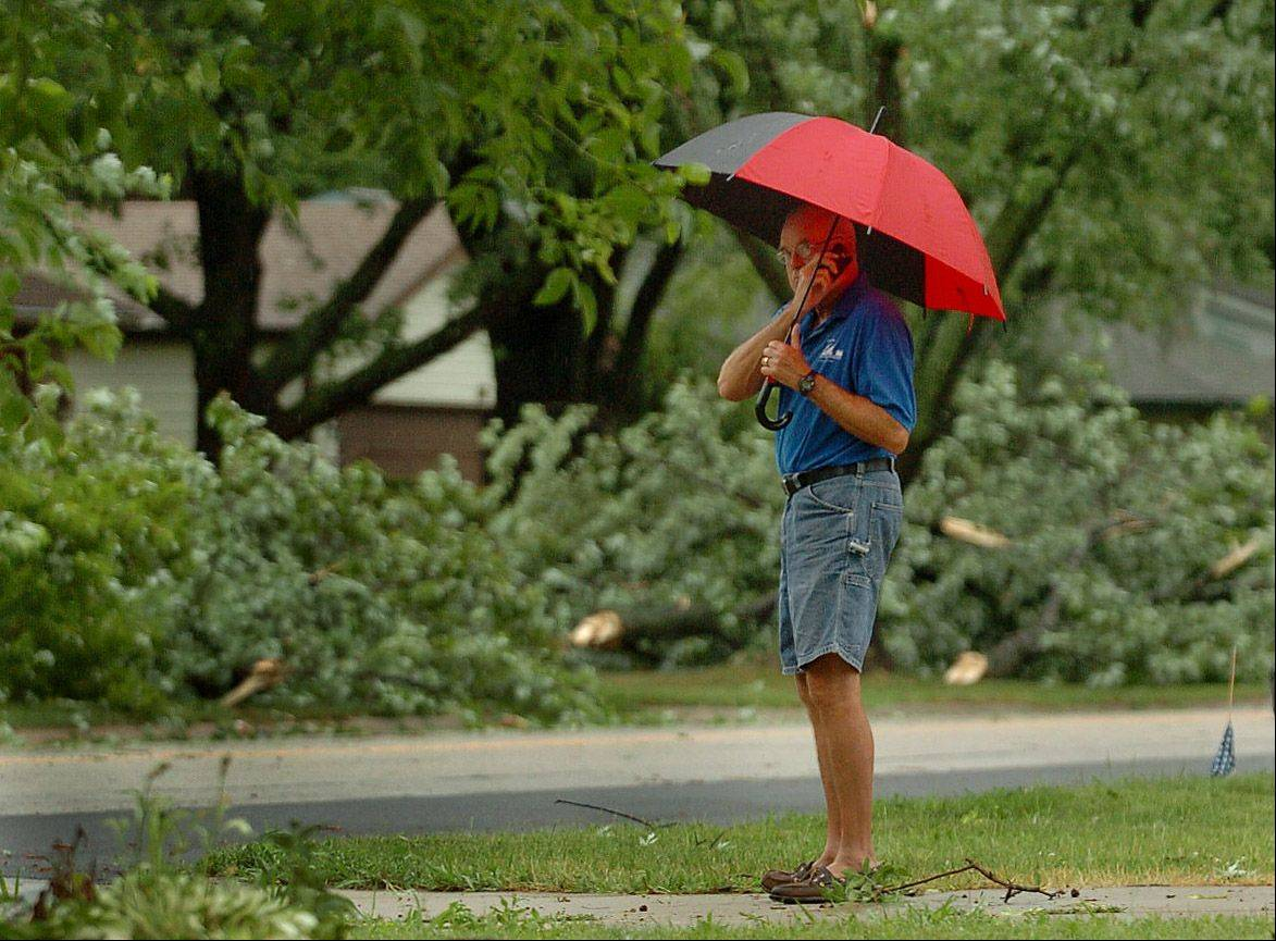 John Ludwig surveys the storm damage along Cunningham Drive and Old Mill Road in Palatine.