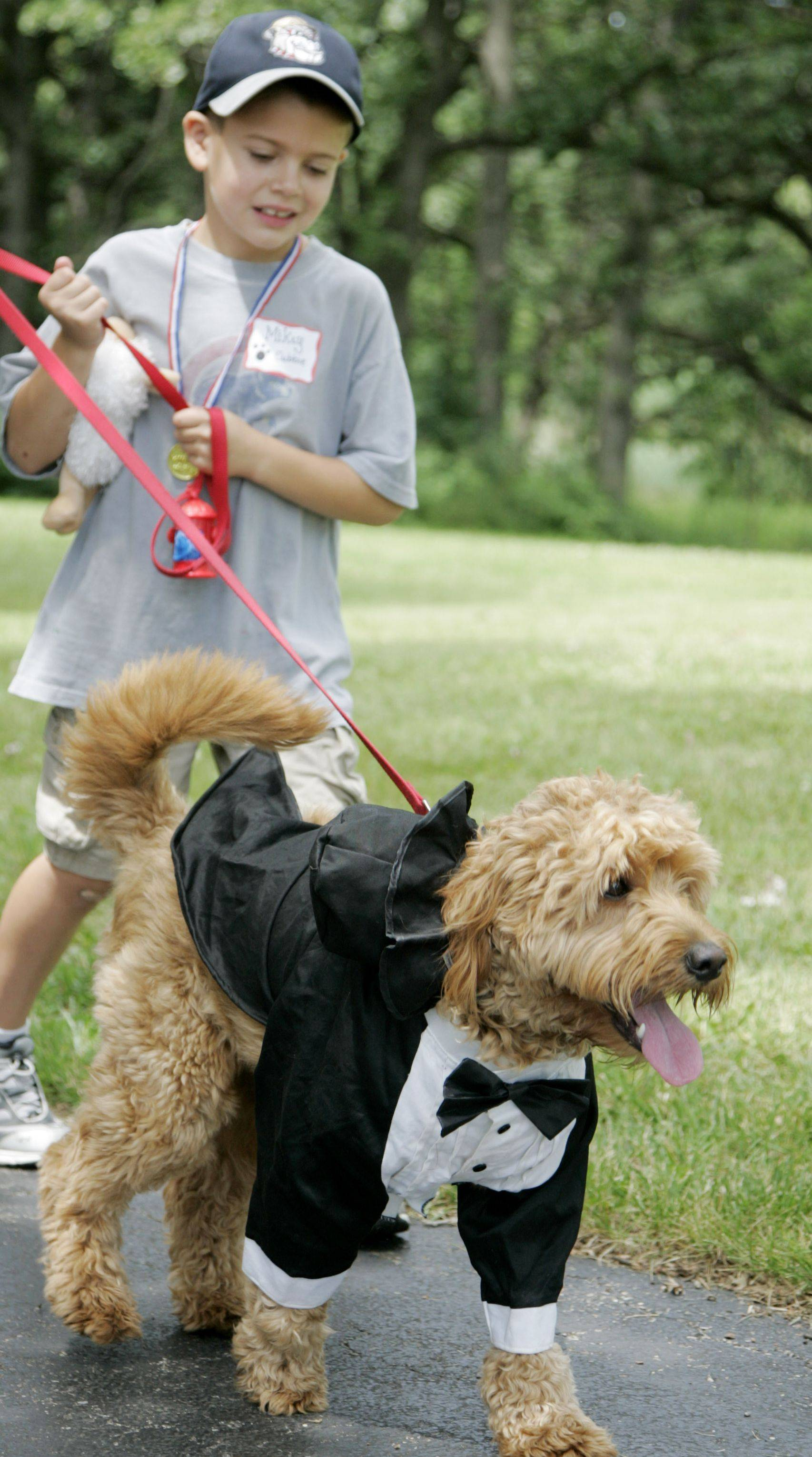 Mikey Fornelli of Cary walks with his dog Cubbie, a golden doodle, who won Best Costume at a previous Cary Park District Kids Dog Show at Lions Park.