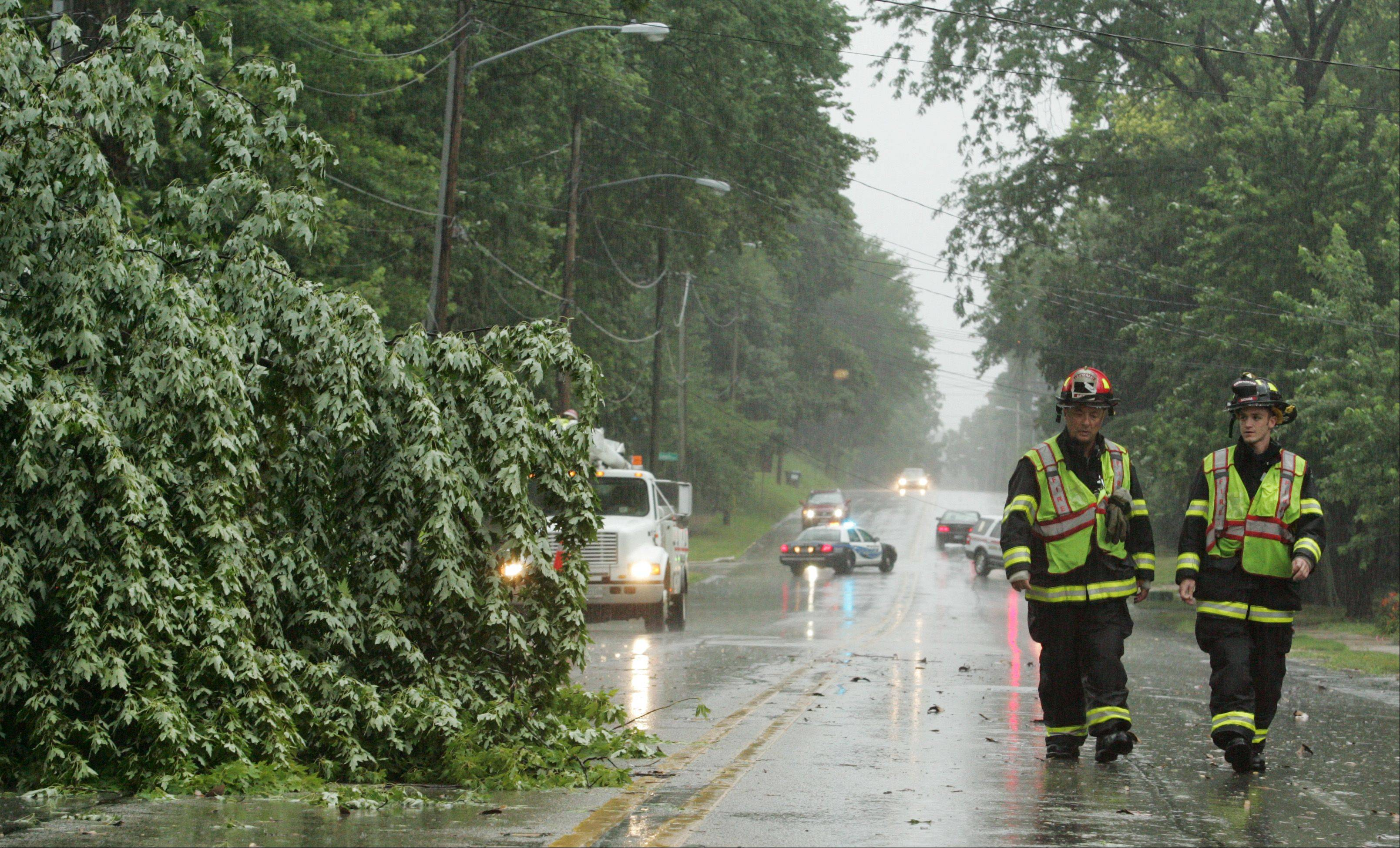 Batavia firefighters Lt. Jamie White, left, and Chris LaFleur survey the scene where a large tree came down in Friday morning�s storm, shutting down traffic about 10 a.m. along Batavia Avenue (Route 31) near McKee Street.