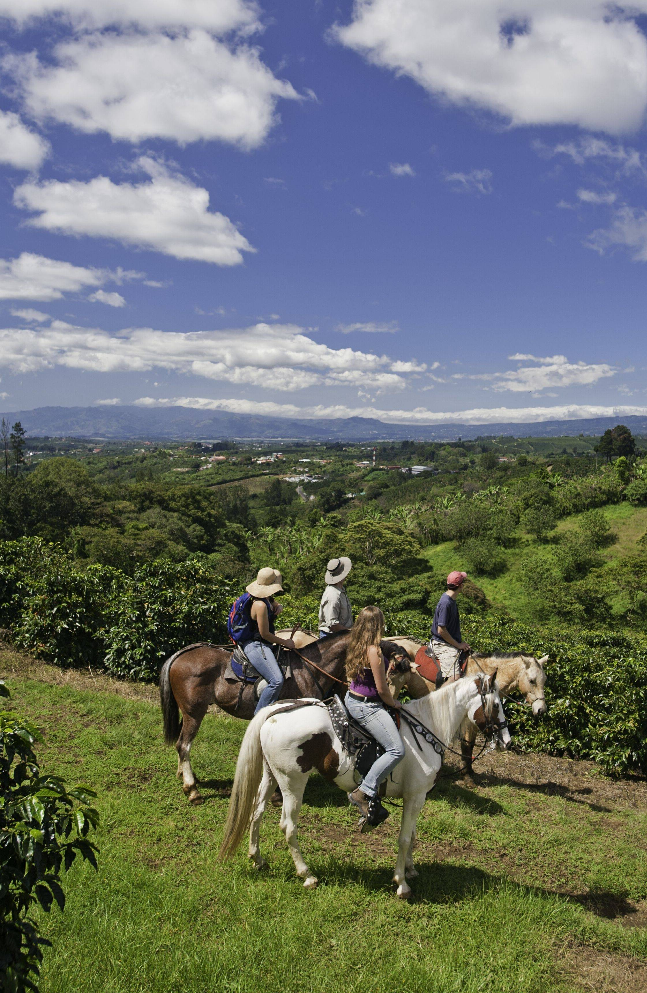 Horseback riding amid the misty cloud forests is just one of many activities at Finca Rosa Blanca Coffee Plantation and Inn in San Jose, Costa Rica.