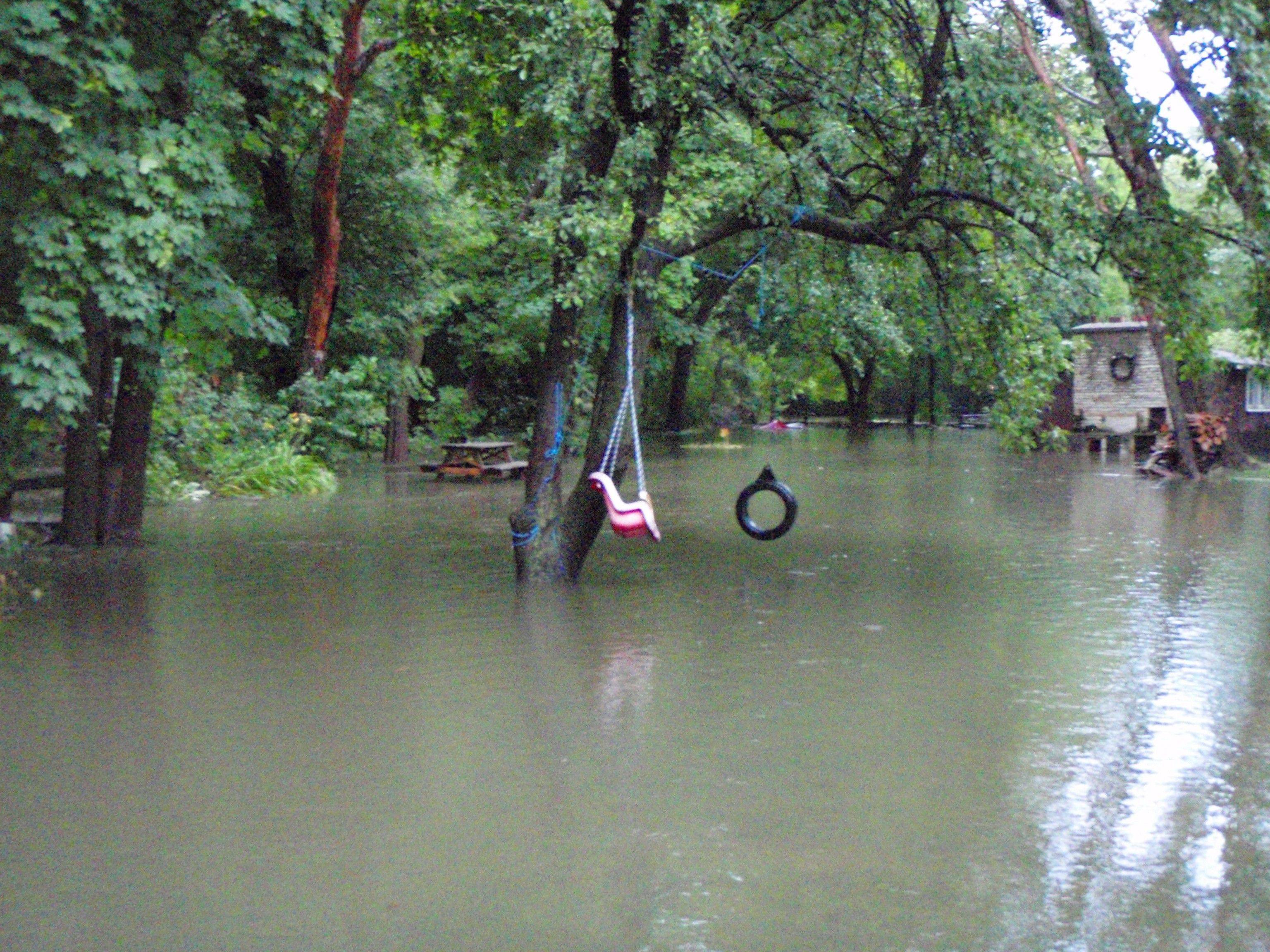 The Madden family's backyard along McDonald Creek in Prospect Heights was completely flooded as of Saturday morning.