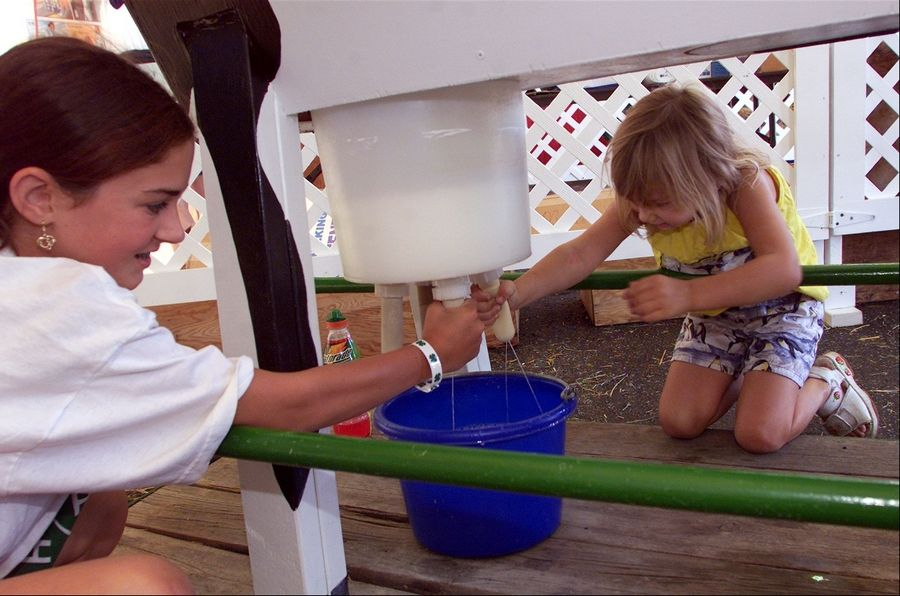 Children will be able to see what it's like to milk a cow at the AgVentureland area of the DuPage County Fair. Kids can try their skills on Maggie the lifelike cow, a popular bovine milked by more than 3,000 people each year at the fair.
