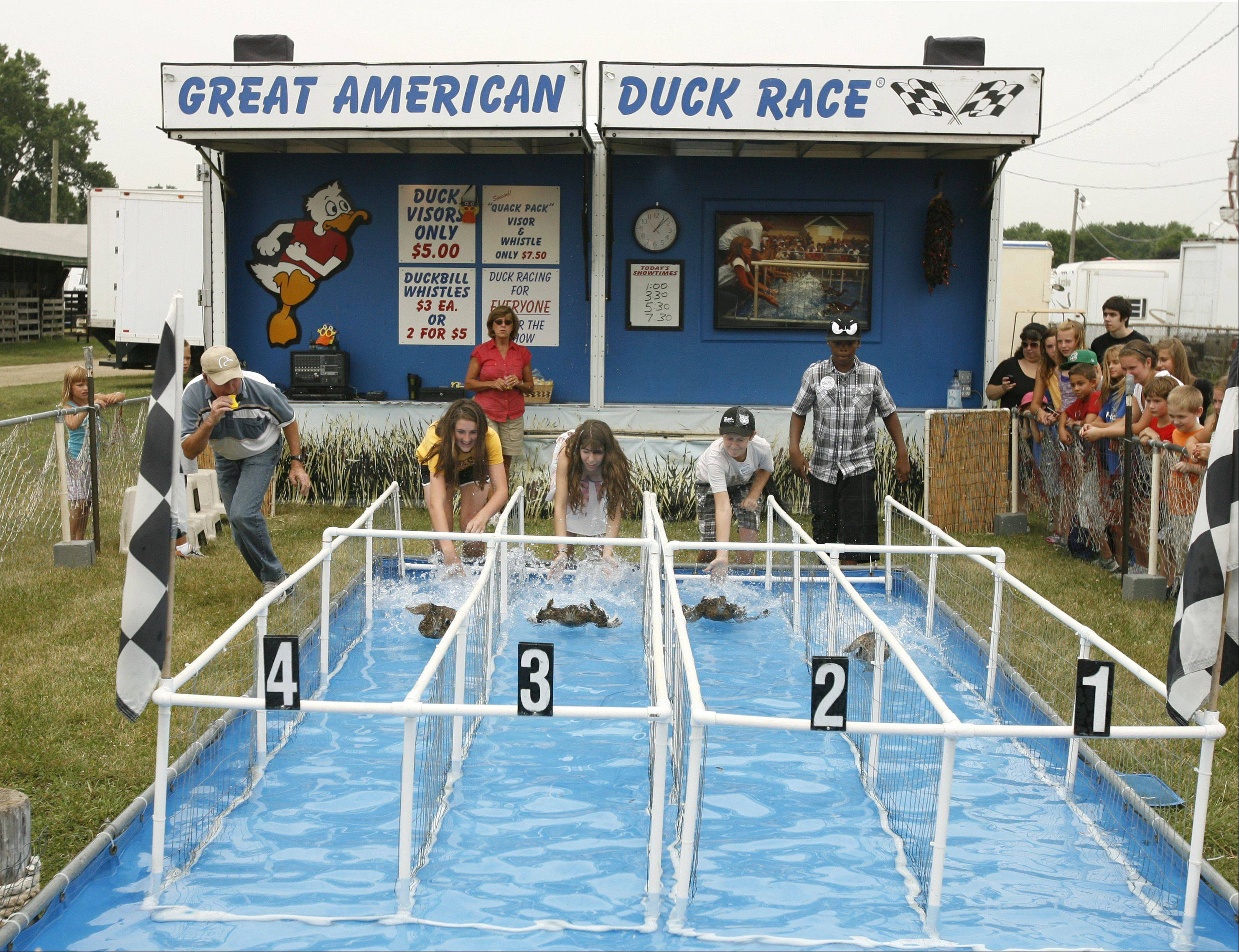 The Great American Duck Race gets under way.