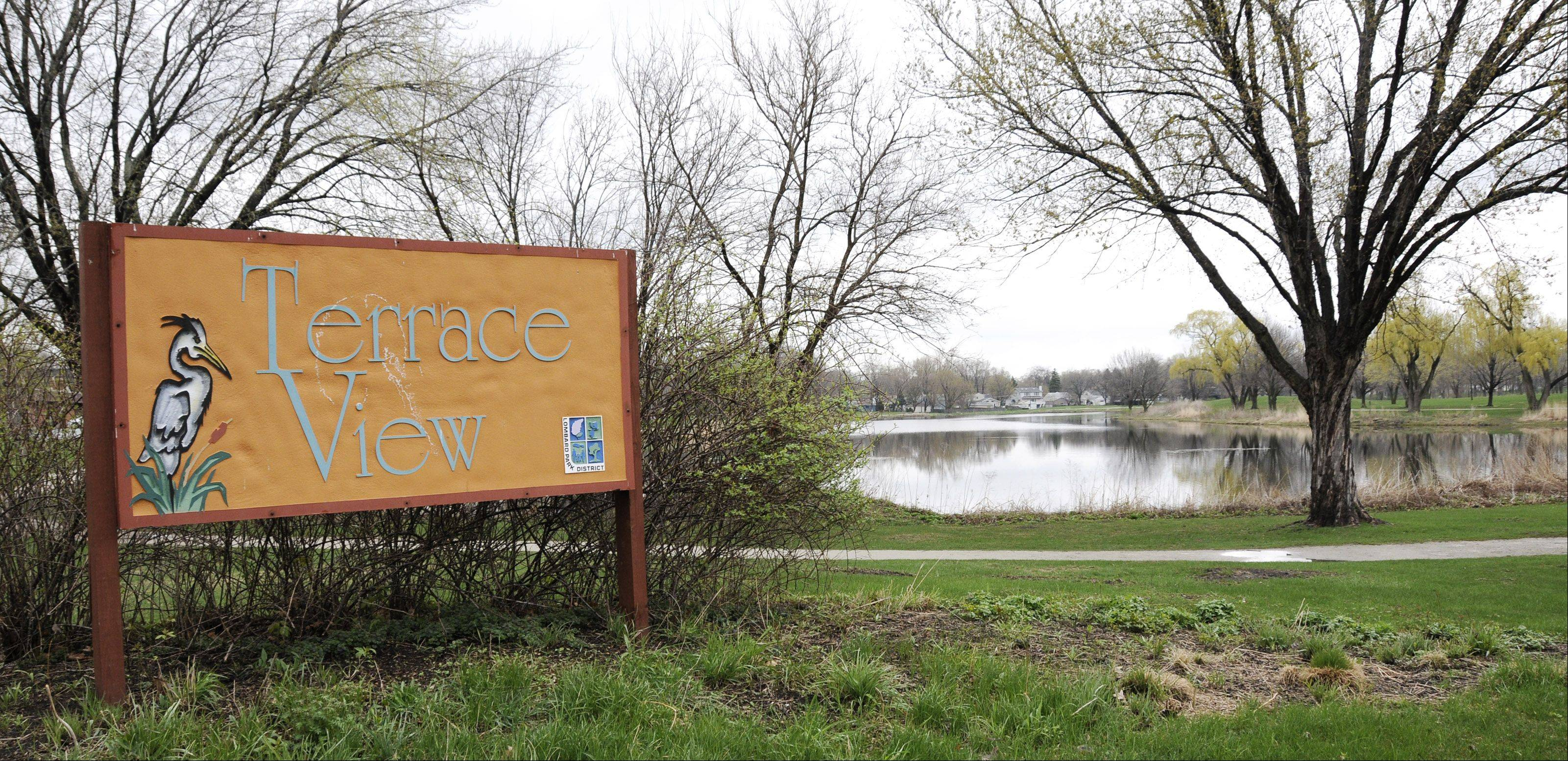 Neighbors of Terrace View Pond in Lombard wish the village and the park district would move faster on their plans to improve stormwater management at the site. A study of options to decrease the likelihood of flooding is expected to be complete by September.