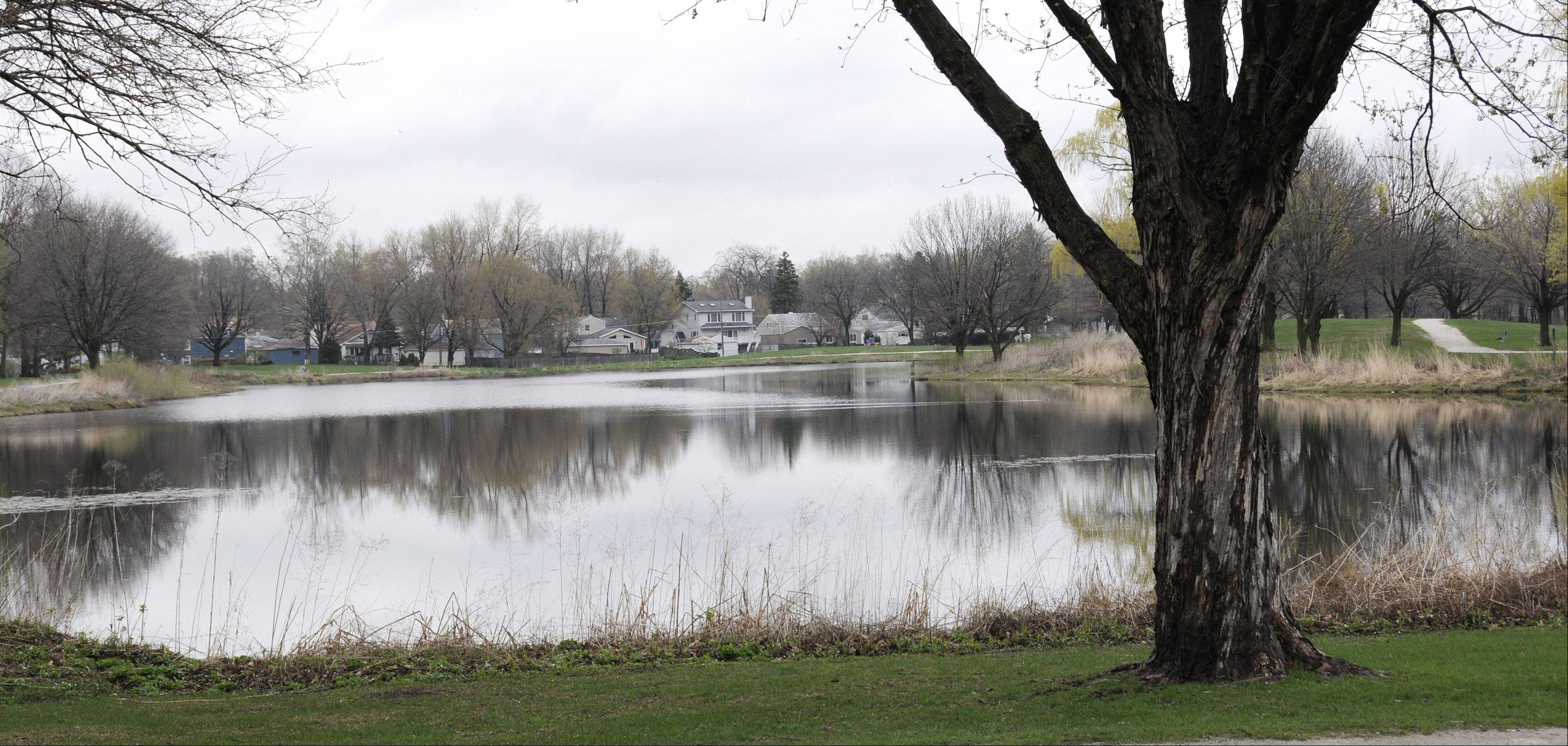 It's been more than a year since Terrace View Pond and the Lombard neighborhoods surrounding it experienced flooding problems after heavy downpours. A study of how to improve stormwater management at the site is expected to be complete in September.