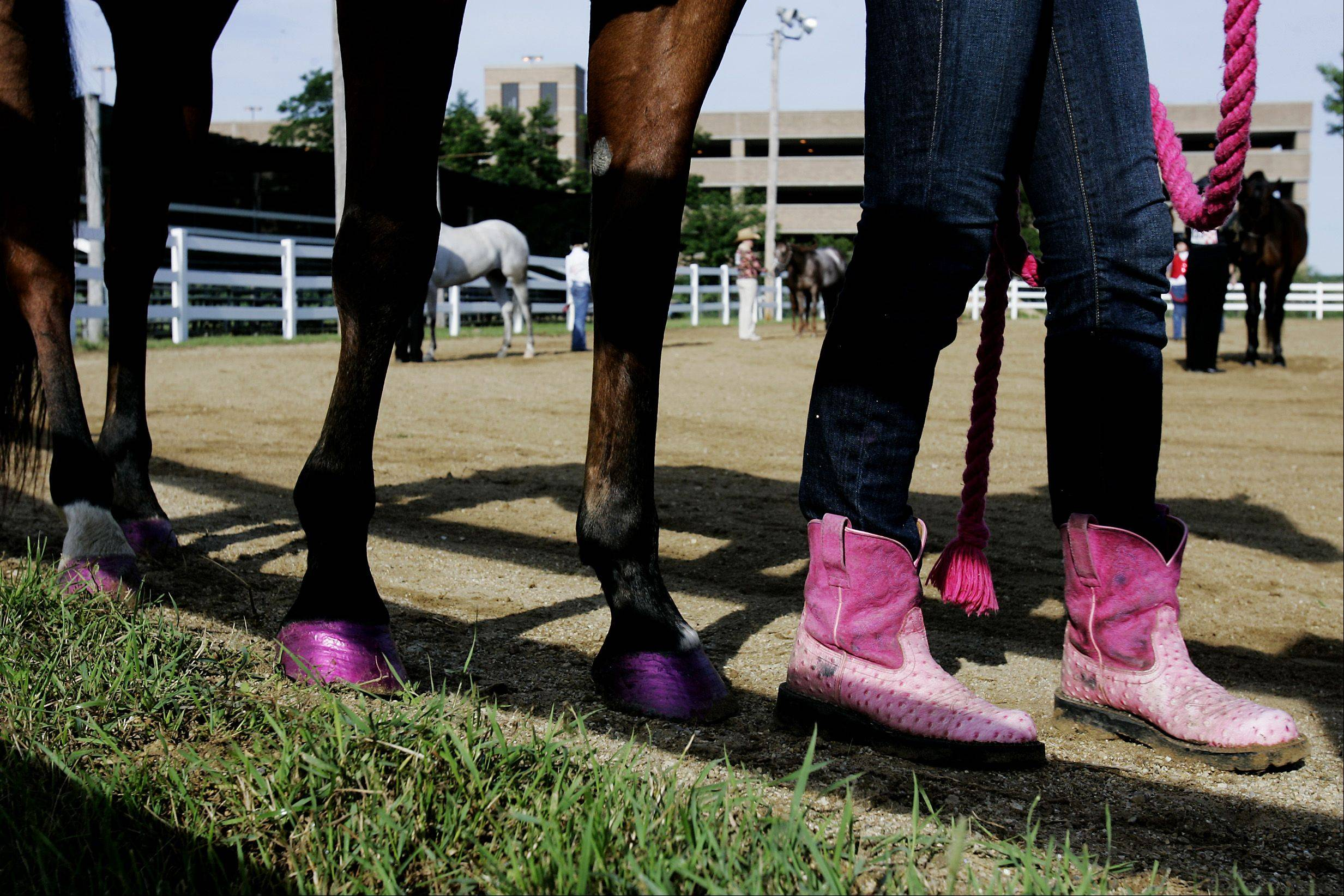 Members of DuPage County 4-H clubs ages 8 to 18 may participate in hundreds of open class entries. The Open Class Horse and Pony Show is scheduled for 8 a.m. Saturday and Sunday at the DuPage County Fair.