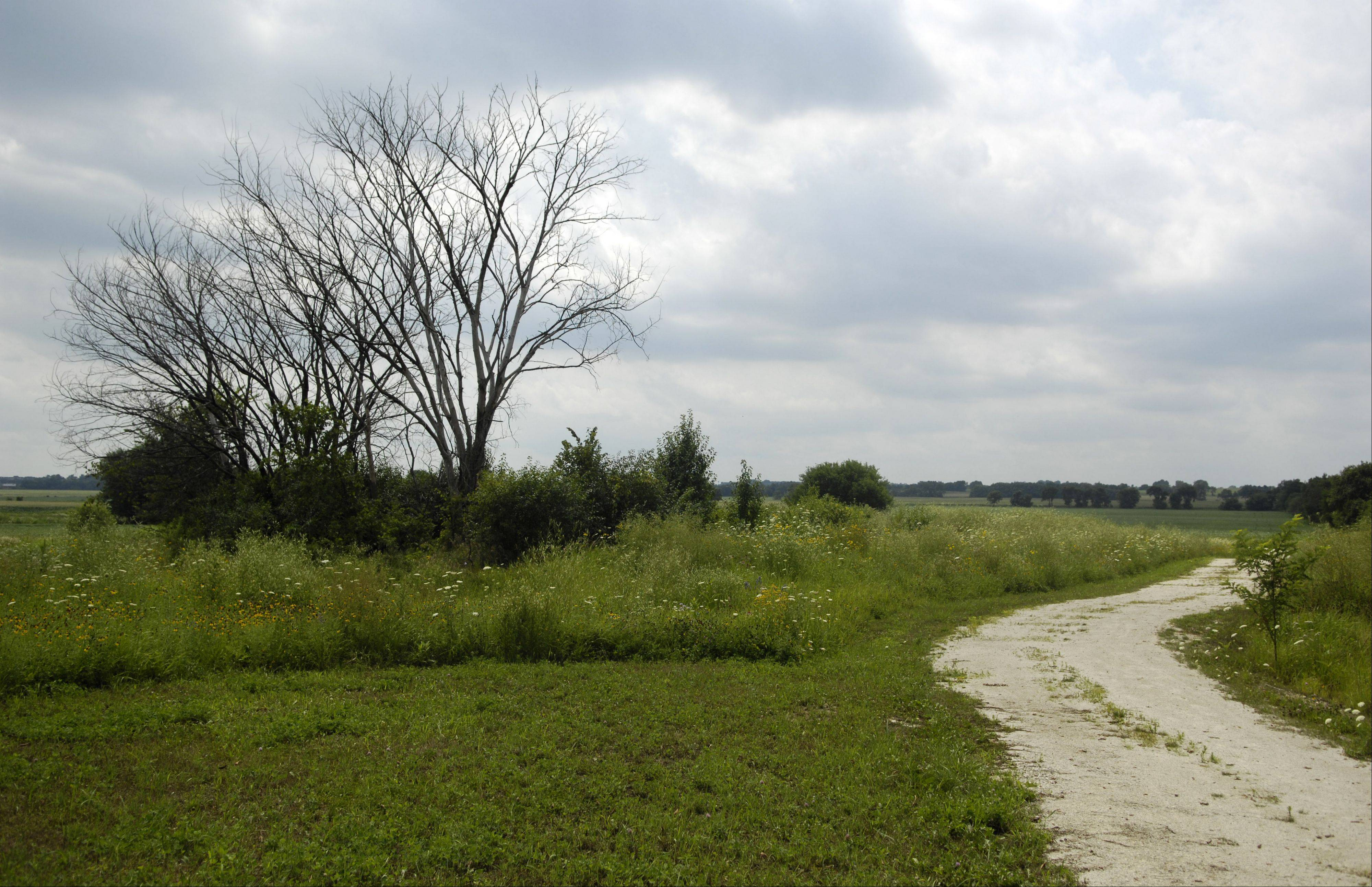 Geneva is likely to approve an intergovernmental pact that means it can finally have community garden plots next year at Prairie Green Preserve. The deal between the city, Geneva Park District and Kane County Forest Preserve would create 140 plots on the site.