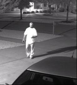 Naperville Police are hoping to identify this man who was seen attempting to enter several residential garages earlier this month.