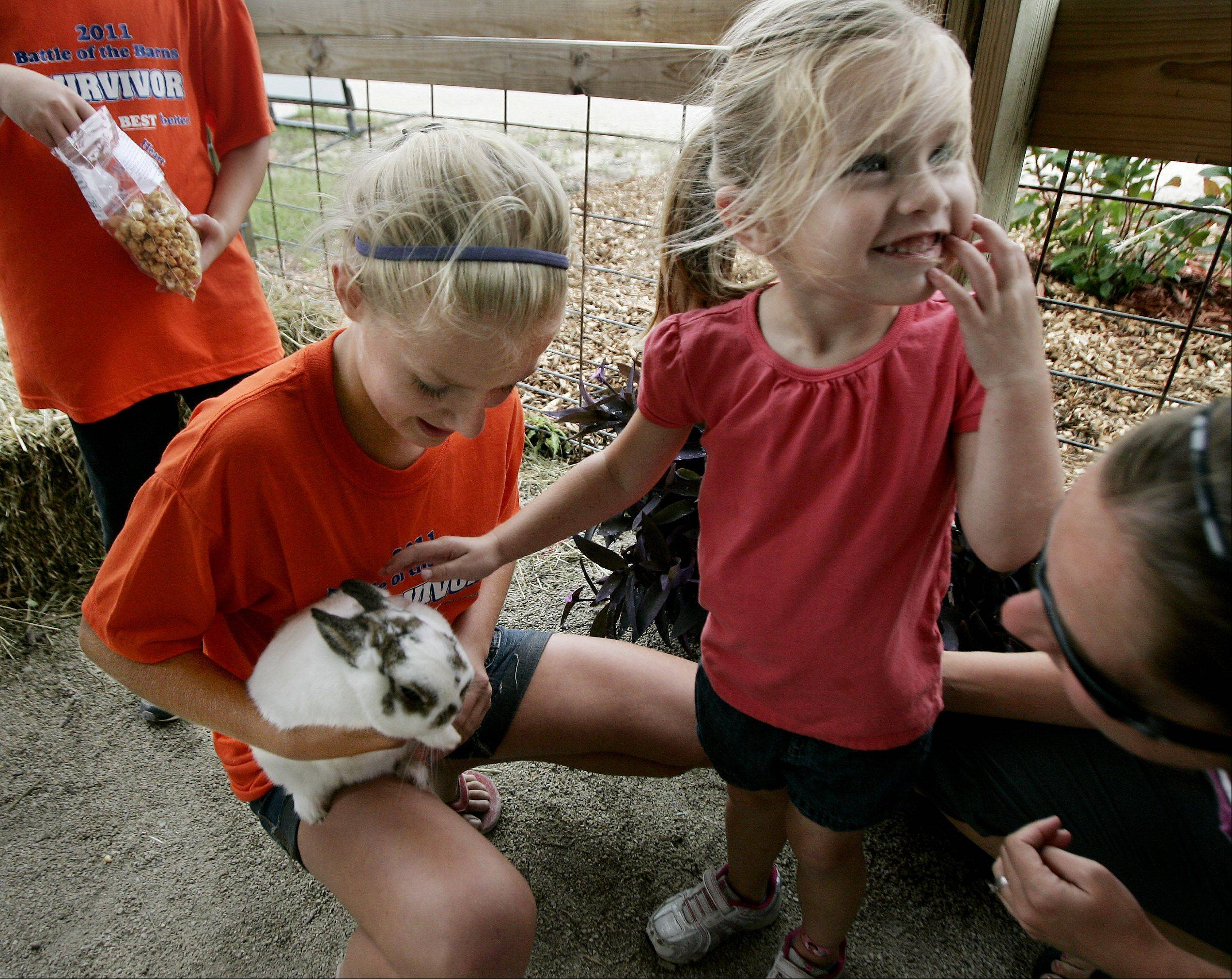 Katie Thern, 13, of Lake Zurich holds Chives, a Netherland dwarf rabbit, as Addison Michelau, 3, of Round Lake reaches out to pet it with her mother, Jamie, during the second day of the 83rd Annual Lake County Fair Wednesday at the fairgrounds in Grayslake.