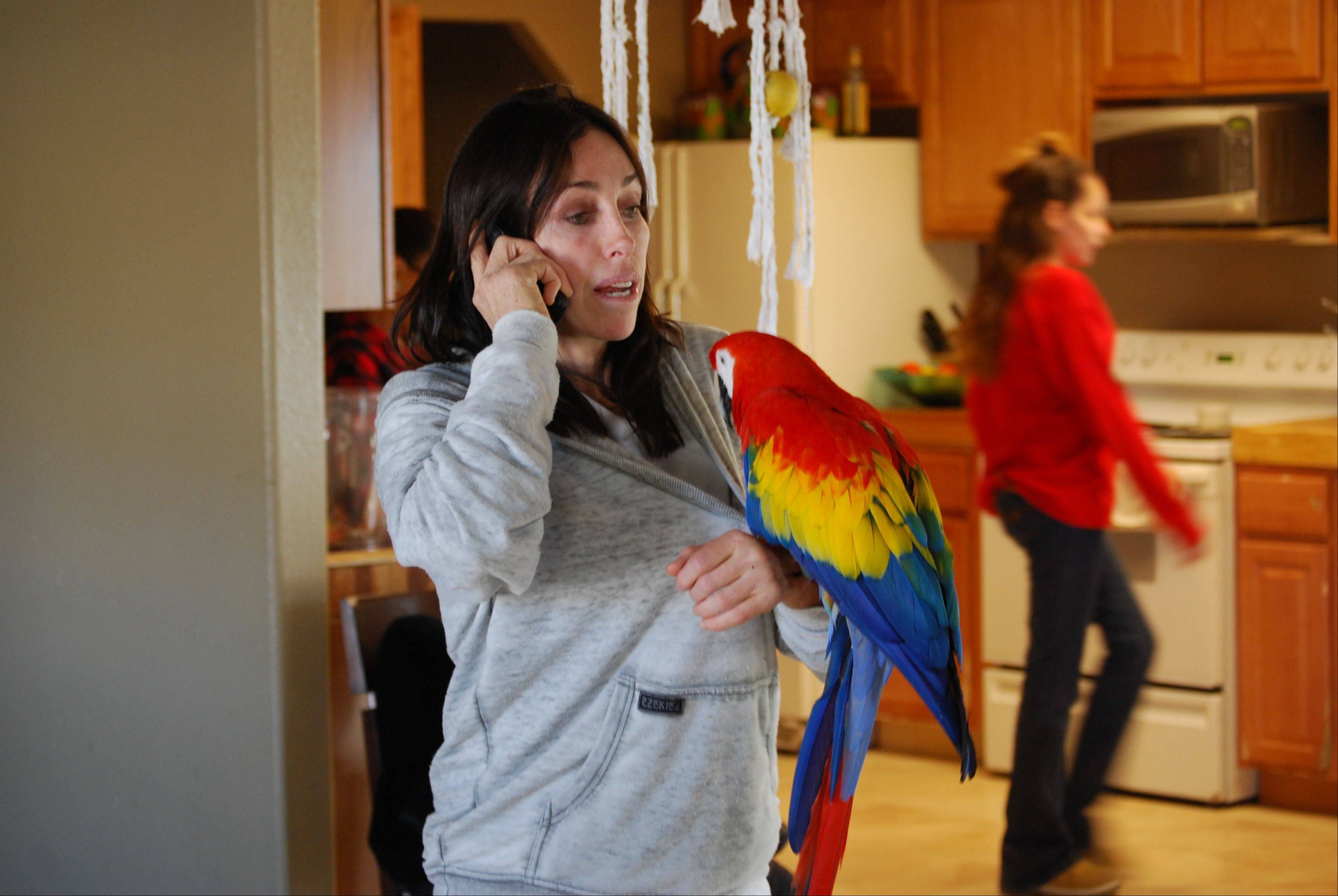 """It's been a crazy way to reinvent myself,"" Heidi Fleiss says of Animal Planet's one-hour special ""Prostitutes to Parrots,"" which airs at 9 p.m. Sunday."