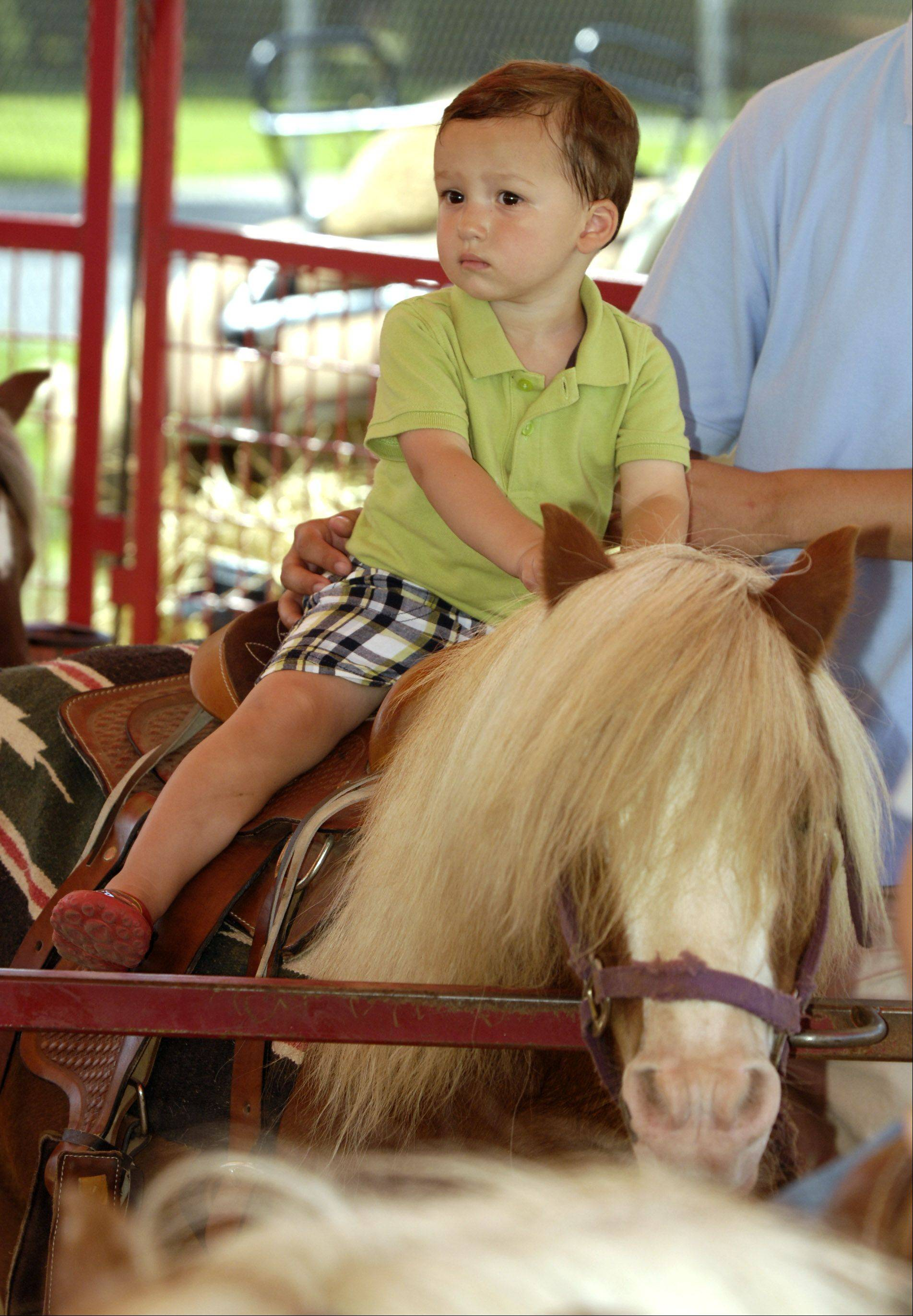 Tyler Talaga, 2, of Naperville takes a pony ride.