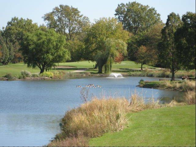 The Elk Grove Park District will begin a $2.26 million renovation of Fox Run Golf Links Course this fall.