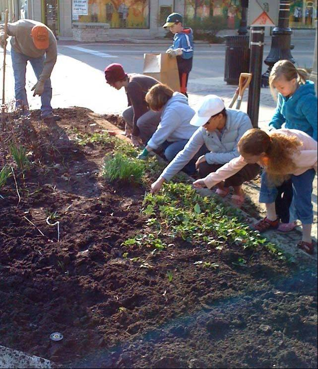 Students at Fox Valley Jewish School will spend nearly a quarter of their time outside of the classroom. Caring for a public flower bed in downtown Geneva was one of last year's projects.
