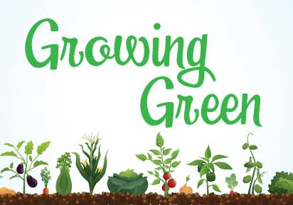 'Growing Green: Preserving the Harvest' at Arlington library