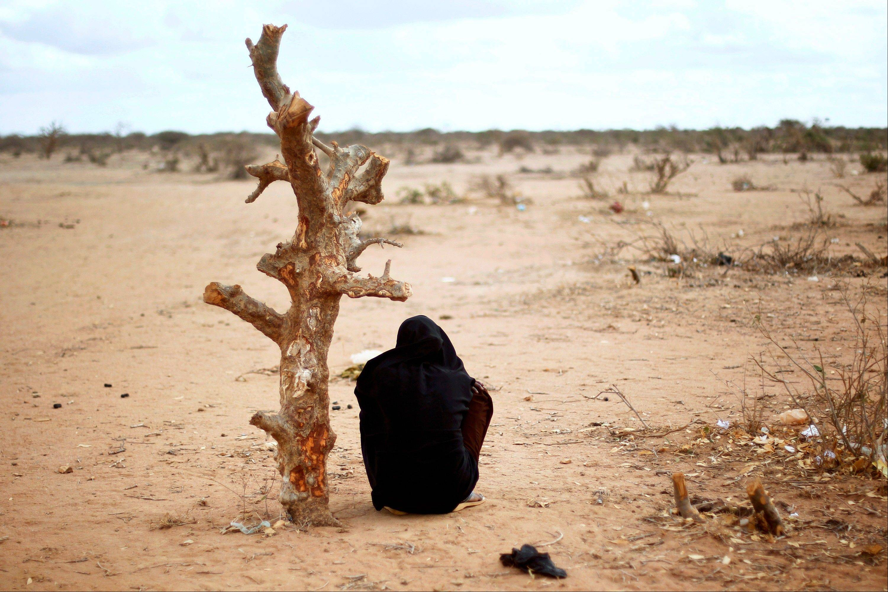 A pregnant Somali woman sits by a tree trunk at UNHCR's Ifo Extension camp outside Dadaab, eastern Kenya, 100 kms (60 miles) from the Somali border. U.S. President Barack Obama has approved $105 million for humanitarian efforts in the Horn of Africa to combat worsening drought and famine. The drought and famine in the Horn of Africa has killed more than 29,000 children under the age of 5 in the last 90 days in southern Somalia alone, according to U.S. estimates. The U.N. says 640,000 Somali children are acutely malnourished, suggesting the death toll of small children will rise.