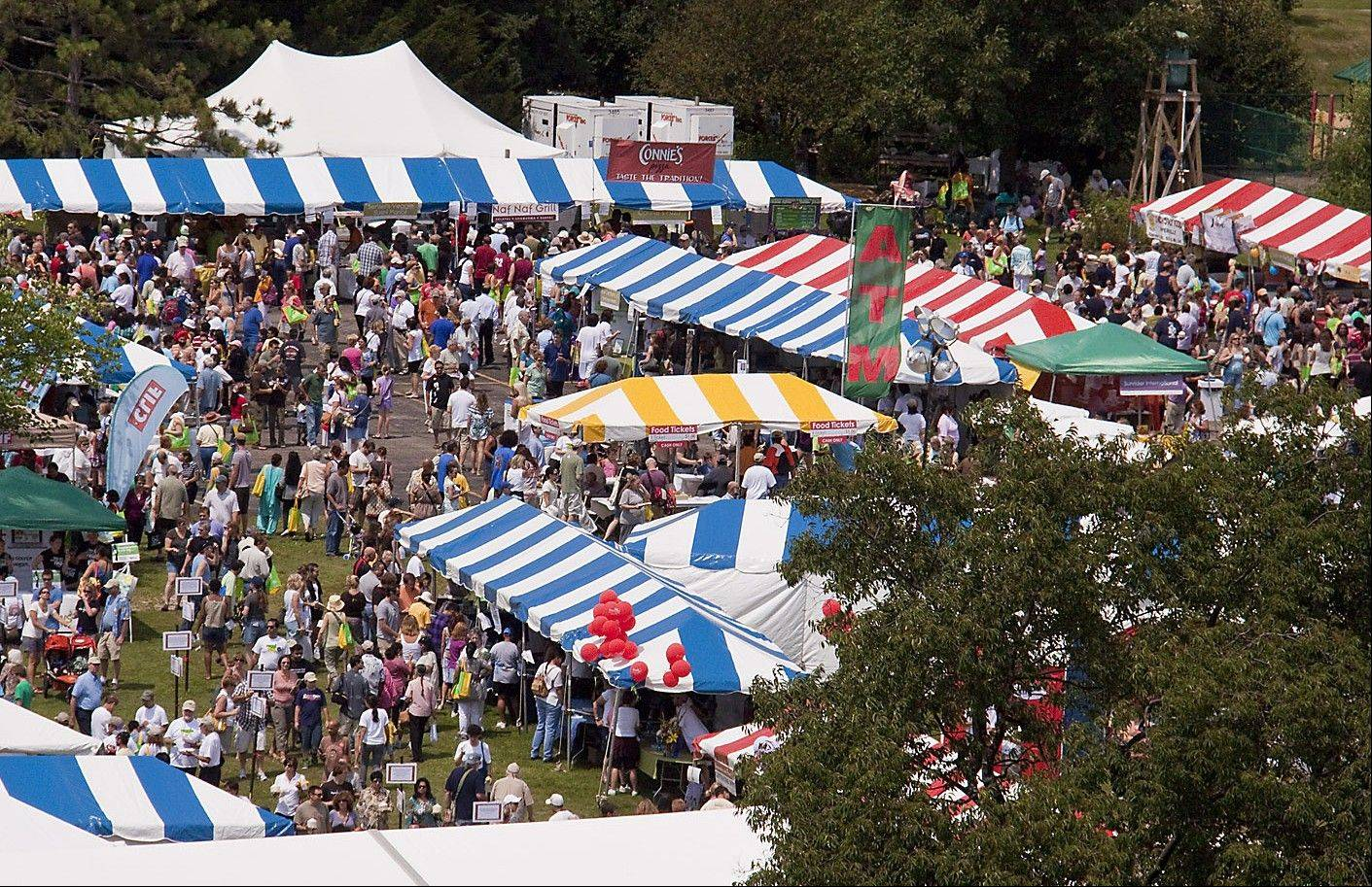 The number of people who come to Naperville for Veggie Fest has been growing substantially for the past six years. This weekend, 25,000 people are expected to attend, making it the largest vegetarian food festival in the country.