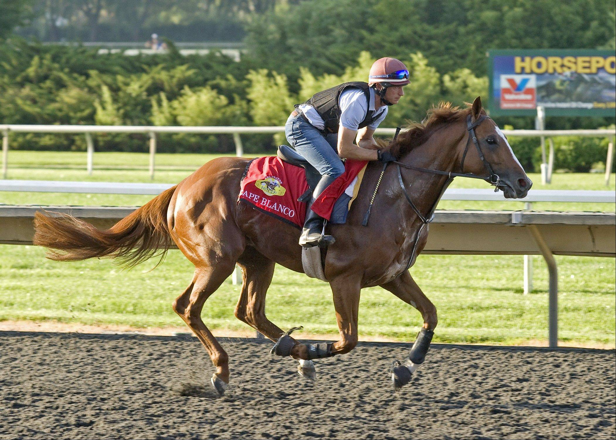Strong international field among Arlington favorites