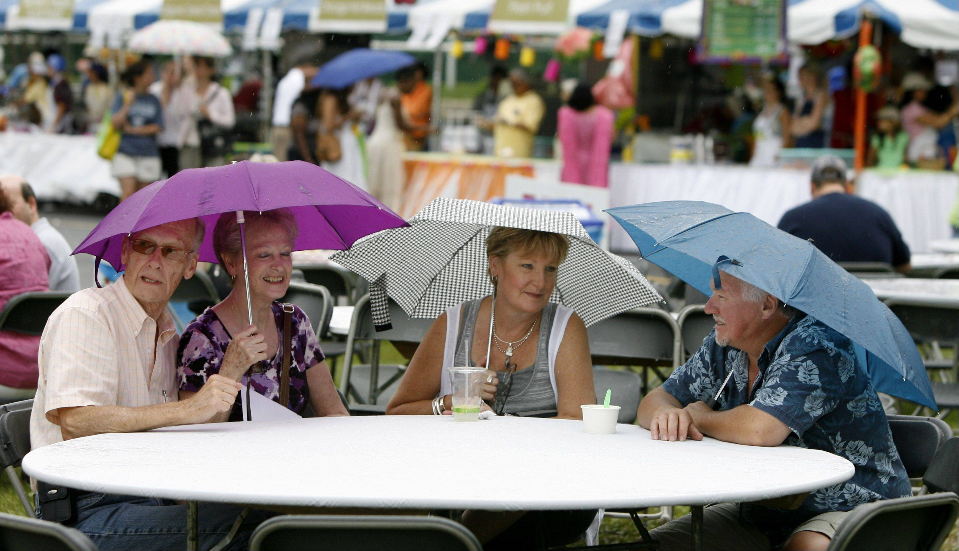 Even in the rain, Veggie Fest strives to focus on the diet and lifestyle choice that is vegetarianism. The annual celebration in Naperville continues from 11 a.m. to 8 p.m. today near Warrenville and Naperville roads.