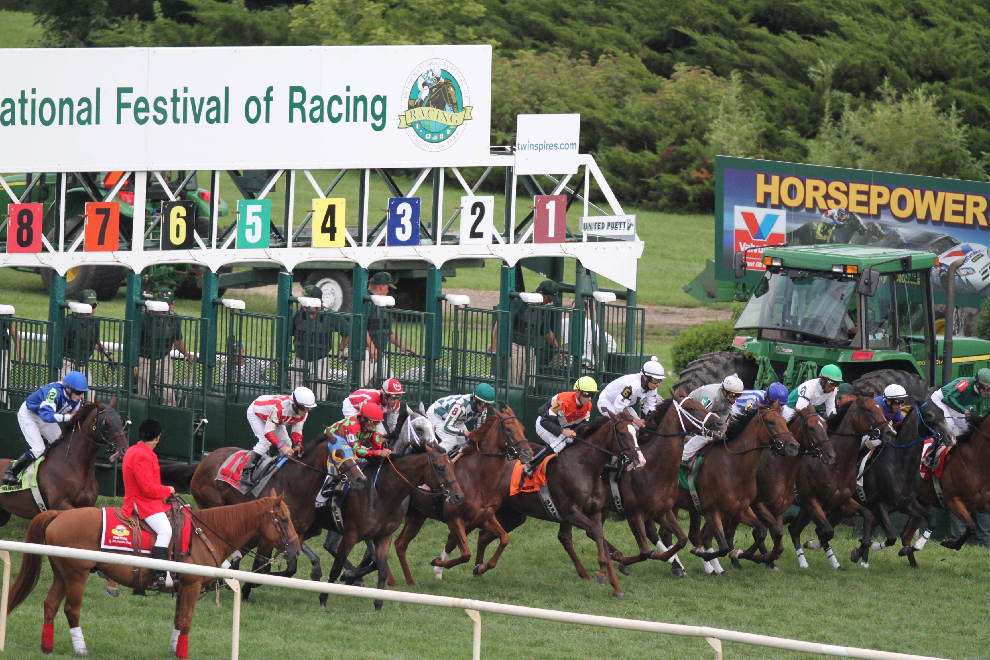 The start of the seventh race at Arlington Park on Saturday.